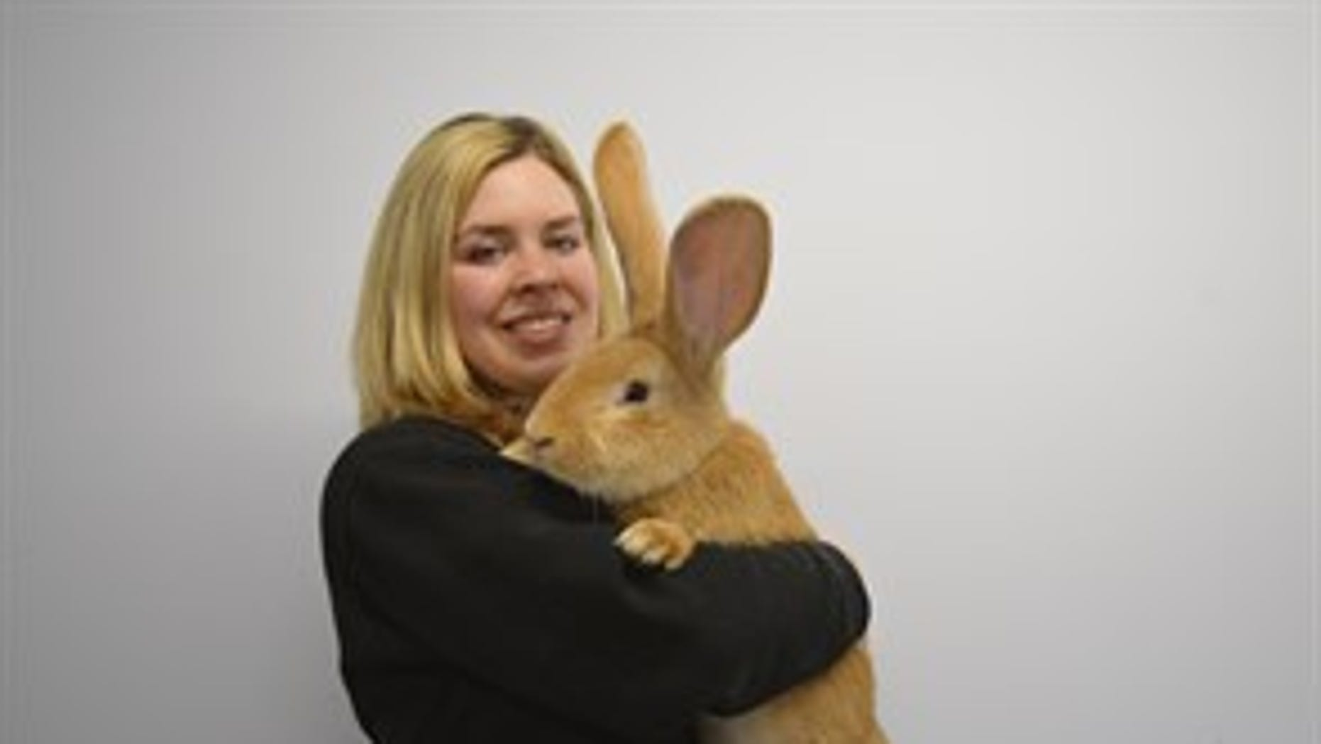 Atlas with SPCA Animal Care Assistant Emma Calder (SPCA).