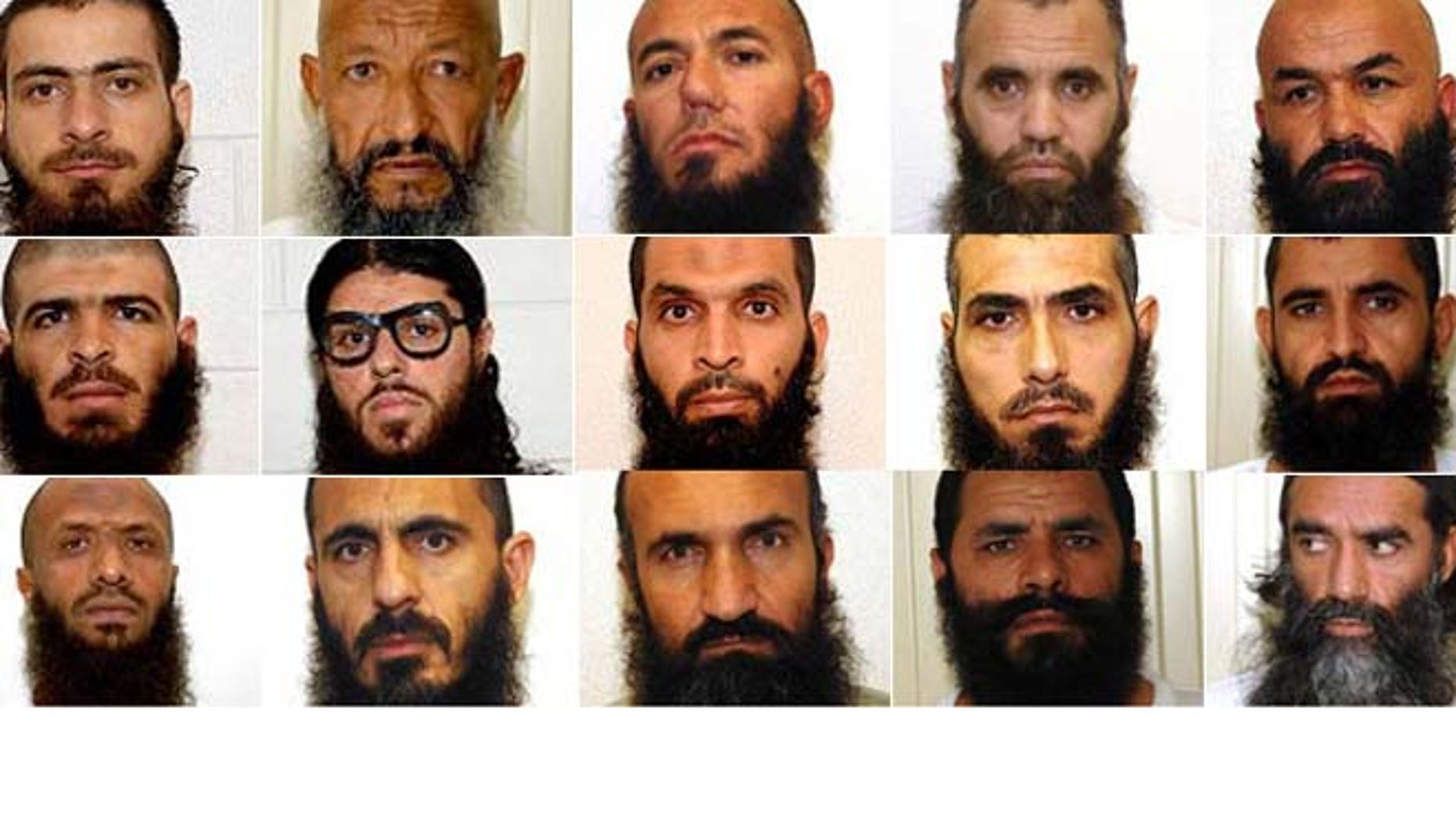 Shown here are 15 of the 23 detainees transferred in 2014 from Guantanamo Bay.