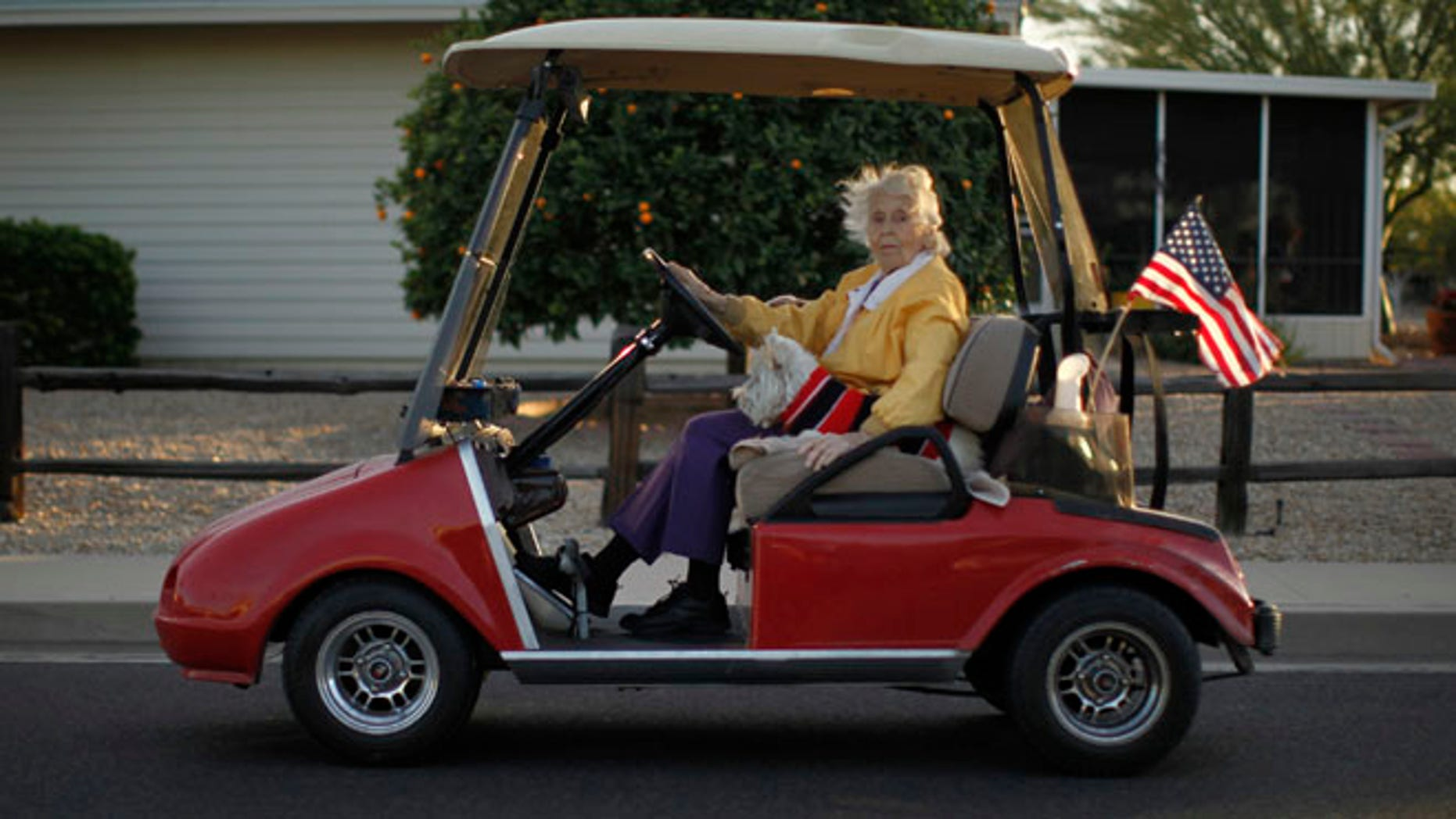A woman rides in a golf cart with her dog in Sun City, Arizona, January 6, 2013.