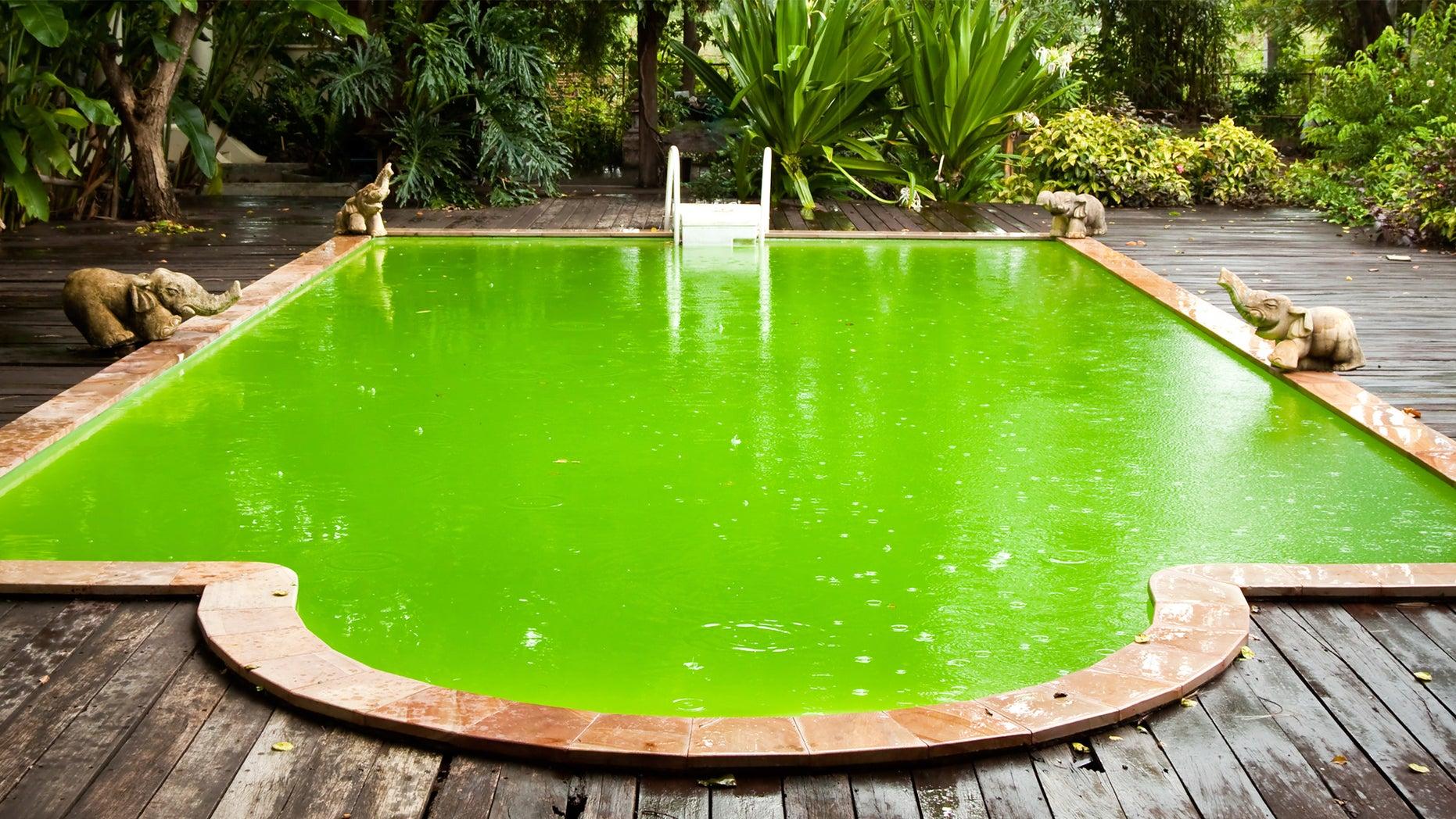 gross-pool