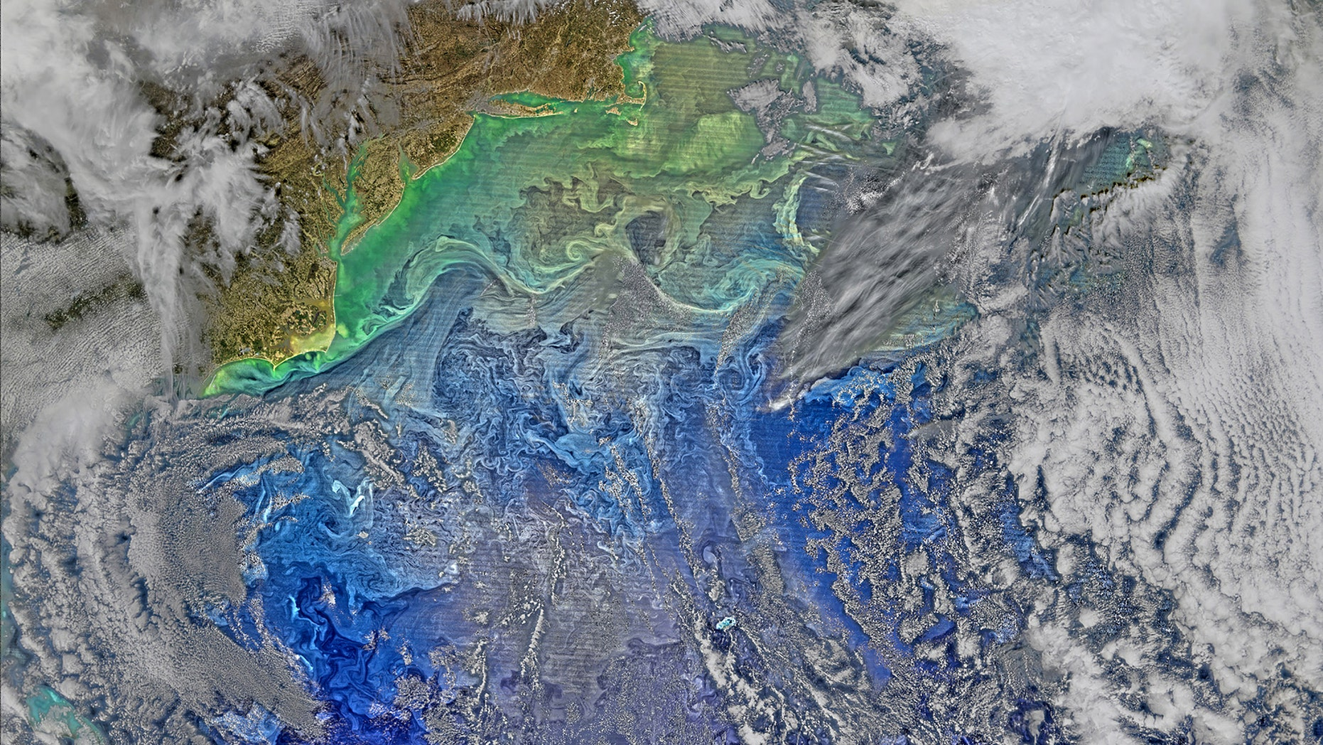 File photo: The Gulf Stream waters flow in somewhat parallel layers, slicing across what is otherwise a fairly turbulent western North Atlantic Ocean in this image collected by the Visible Infrared Imaging Radiometer Suite on NASA-NOAA's Suomi NPP satellite March 9, 2016, and released April 5, 2016. The turbulence is made visible by the pigmented phytoplankton it entrains, according to a NASA news release. Picture taken March 9, 2016. (REUTERS/NASA/NOAA/Handout)
