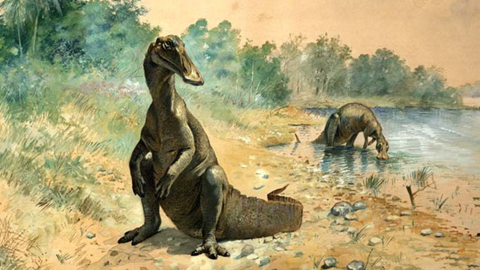 An early restoration of a duck-billed hadrosaur.