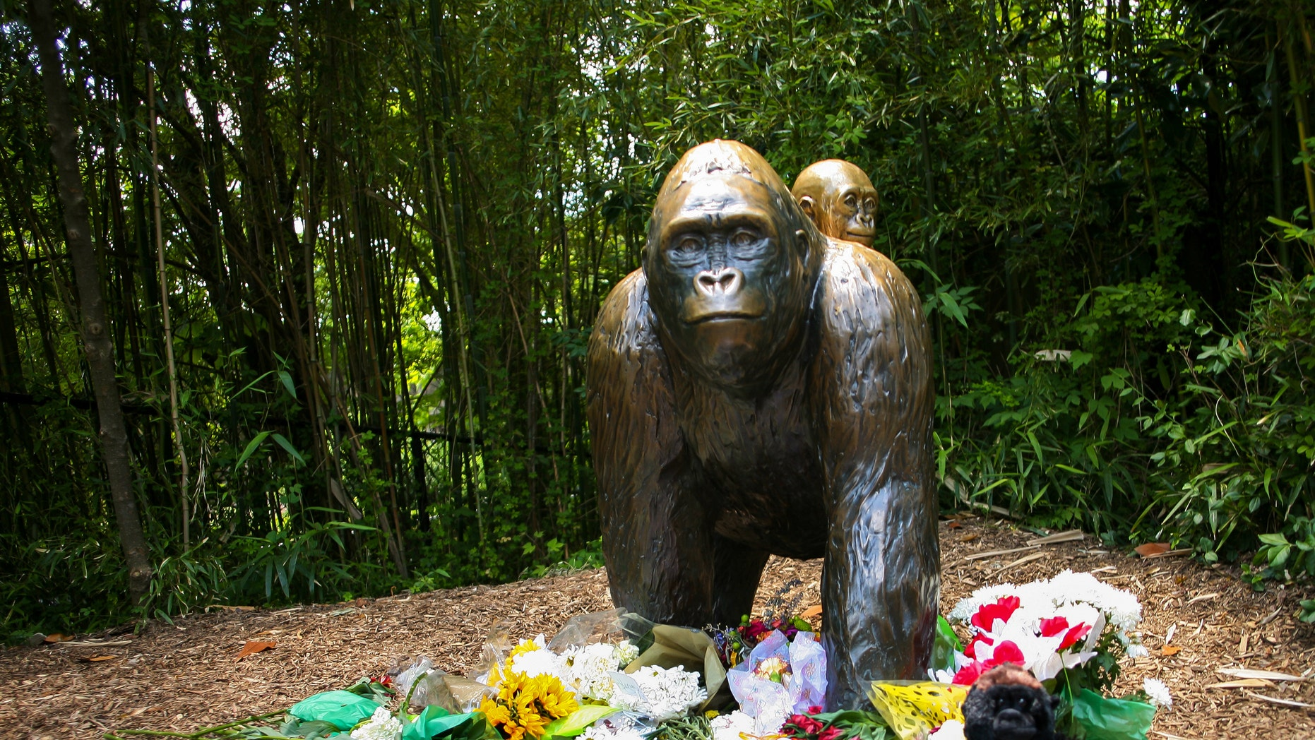 File photo - Flowers lay around a bronze statue of a gorilla and her baby outside the Cincinnati Zoo's Gorilla World exhibit, two days after a boy tumbled into its moat and officials were forced to kill Harambe, a Western lowland gorilla, in Cincinnati, Ohio, U.S. May 30, 2016. (REUTERS/William Philpot)
