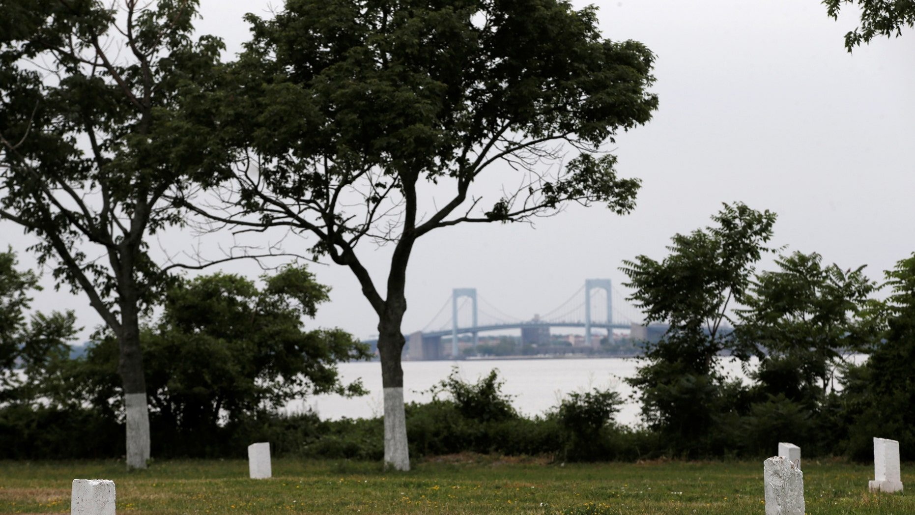 File photo: Stones mark mass graves on Hart Island, the former location of a prison and hospital that is a potter's field burial site of as many as one million people, in New York, United States, June 23, 2016. (REUTERS/Mike Segar)