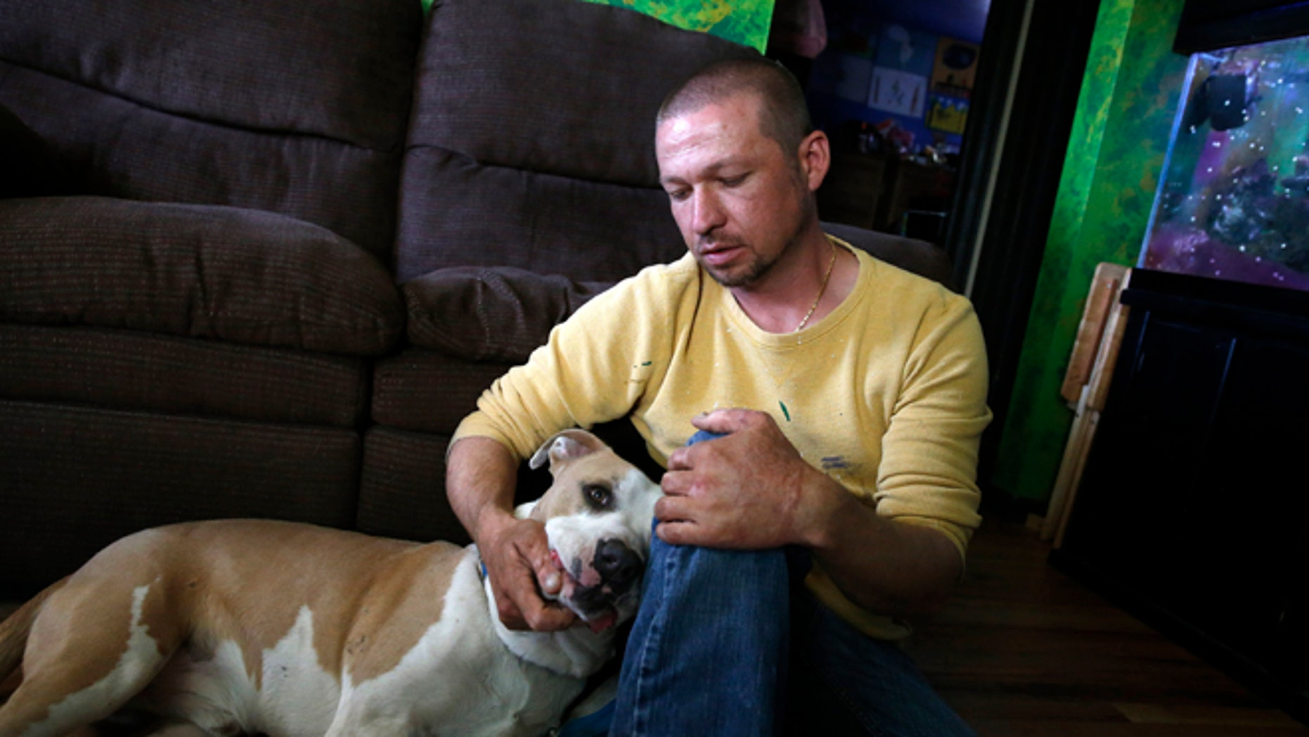 Wayne Winkler, who suffered burns to 12 percent of his body when butane fumes ignited while he was making hash oil at home, pets his dog Bailey, in his living room, in Denver, May 1, 2014. Winkler agreed to talk to The Associated Press to send a message that making hash oil at home is highly dangerous. Since marijuana became legal on Jan. 1, the state has seen nearly three dozen explosions caused by people making pot concentrates at home, and authorities are grappling with what to do about it. (AP/Brennan Linsley)