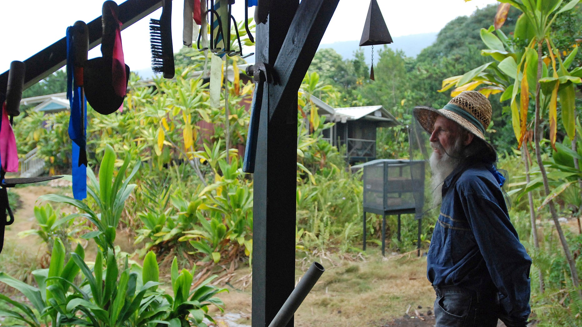 In this Feb. 17, 2016 photo, organic farmer Steve Mann wears mosquito netting while surveying the grounds on his Old Ways Farm in Captain Cook, Hawaii. Hawaii's strong anti-pesticide sentiment, tropical conditions, under-staffing in the Department of Health and an island culture where many live off the grid are part of the many challenges facing the teams that fight dengue fever. Those same issues would confront Hawaii if the Zika virus were to arrive on the islands, and many fear the virus linked to birth defects could be just a plane ride away. (AP Photo/Cathy Bussewitz)