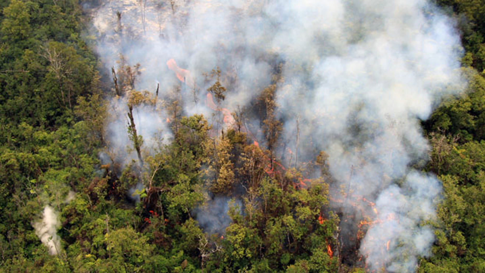 Sept. 3, 2014: In this photo released by the U.S. Geological Survey, fluid lava streams from the June 27 lava flow from the Kilauea volcano in Pahoa, Hawaii.