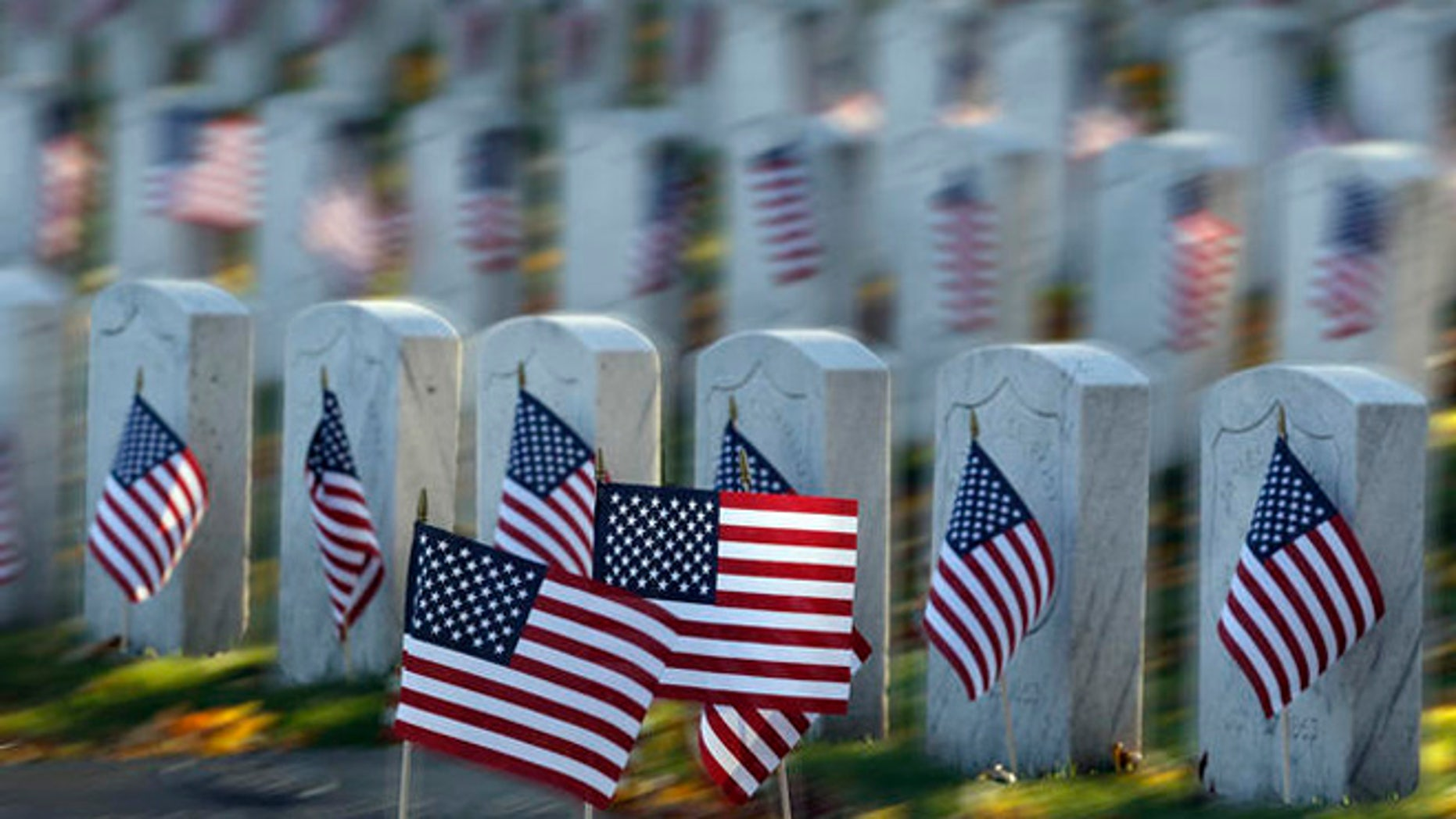 American flags are on display at Rosehill cemetery for Veterans Day in Chicago on Friday, Nov. 11, 2011.  (AP Photo/Nam Y. Huh)