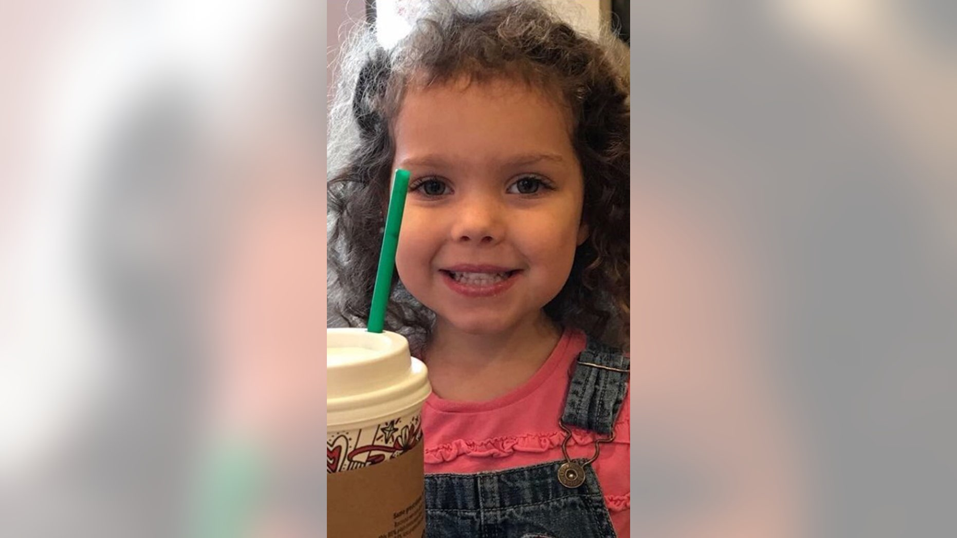 Heidi Renae Todd , 4, was reported missing from her home in South Carolina on Tuesday.