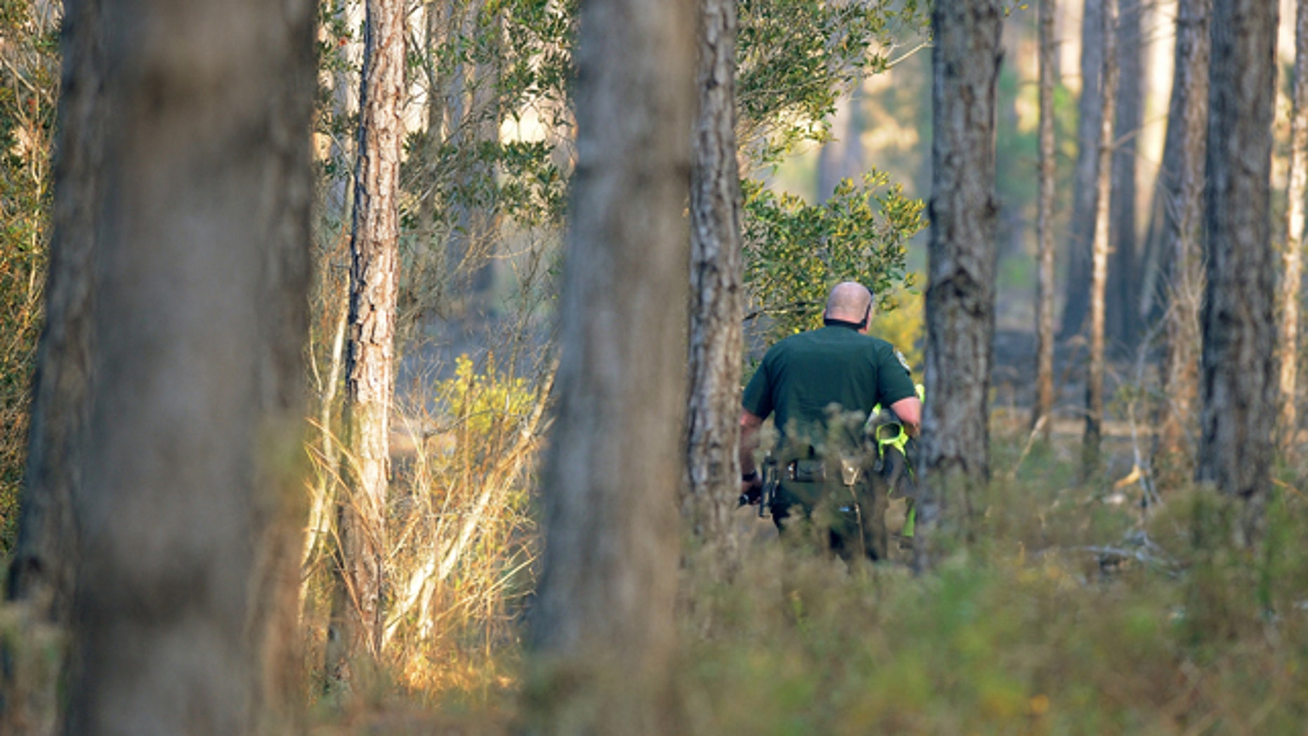 Dec. 26: A Clay County Sheriff's deputy walks by smoldering brush on his way to wreckage from a helicopter crash in an area west of Green Cove Springs.