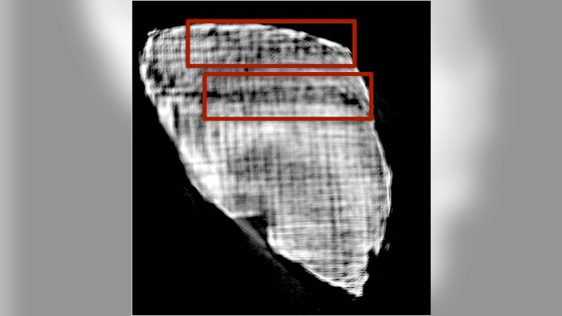 Hundreds of rolled, charred papyrus scrolls that were buried in ash in Herculaneum after the eruption of Mount Vesuvius in A.D. 79 could finally be read, thanks to a new technique that uses X-ray tomography. Here, letters from one of the interi