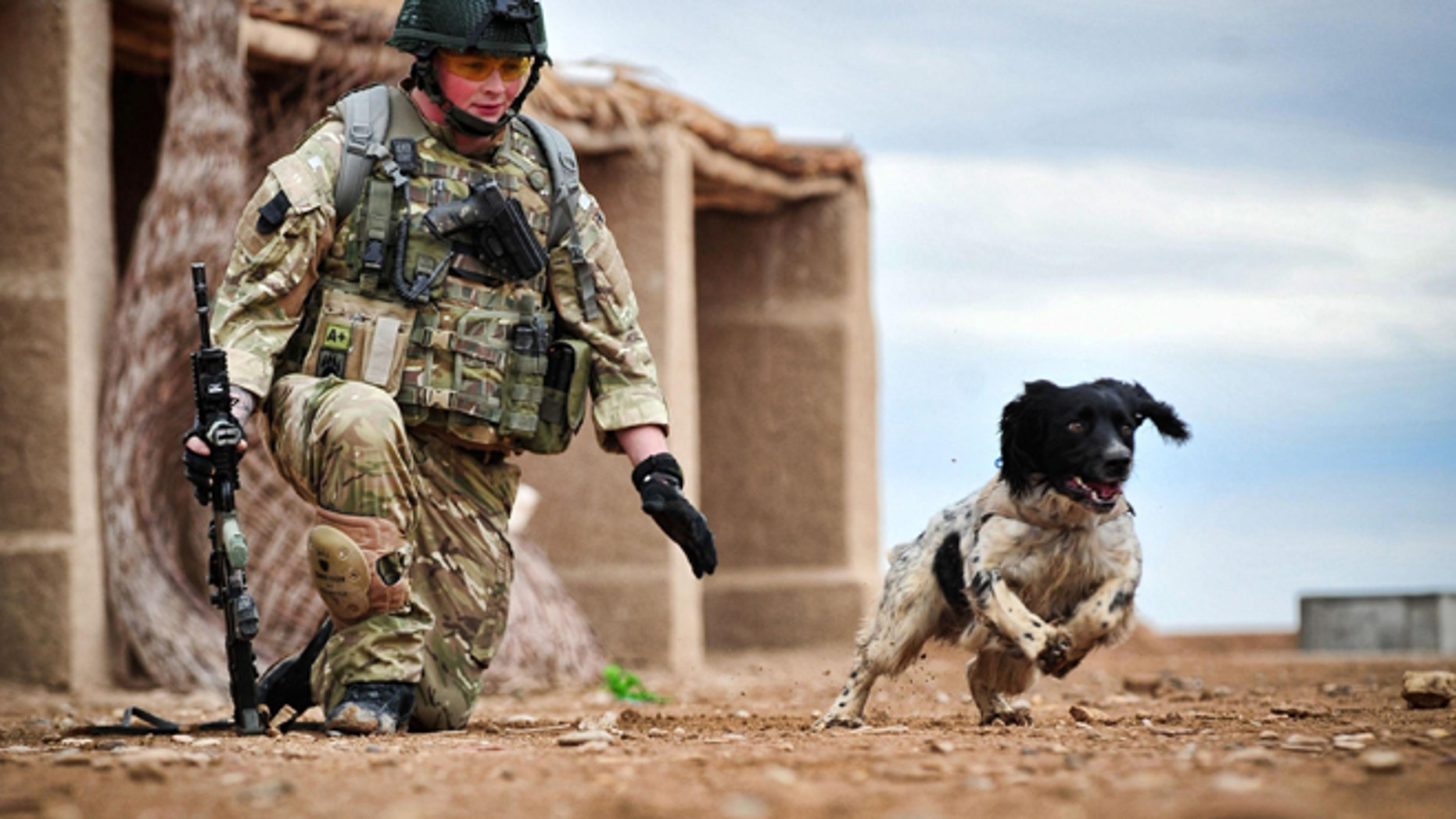 This is a undated Ministry of Defence handout photo made available on Thursday Oct. 25, 2012  of Lance Corporal Liam Tasker and his Springer spaniel mix Theo.