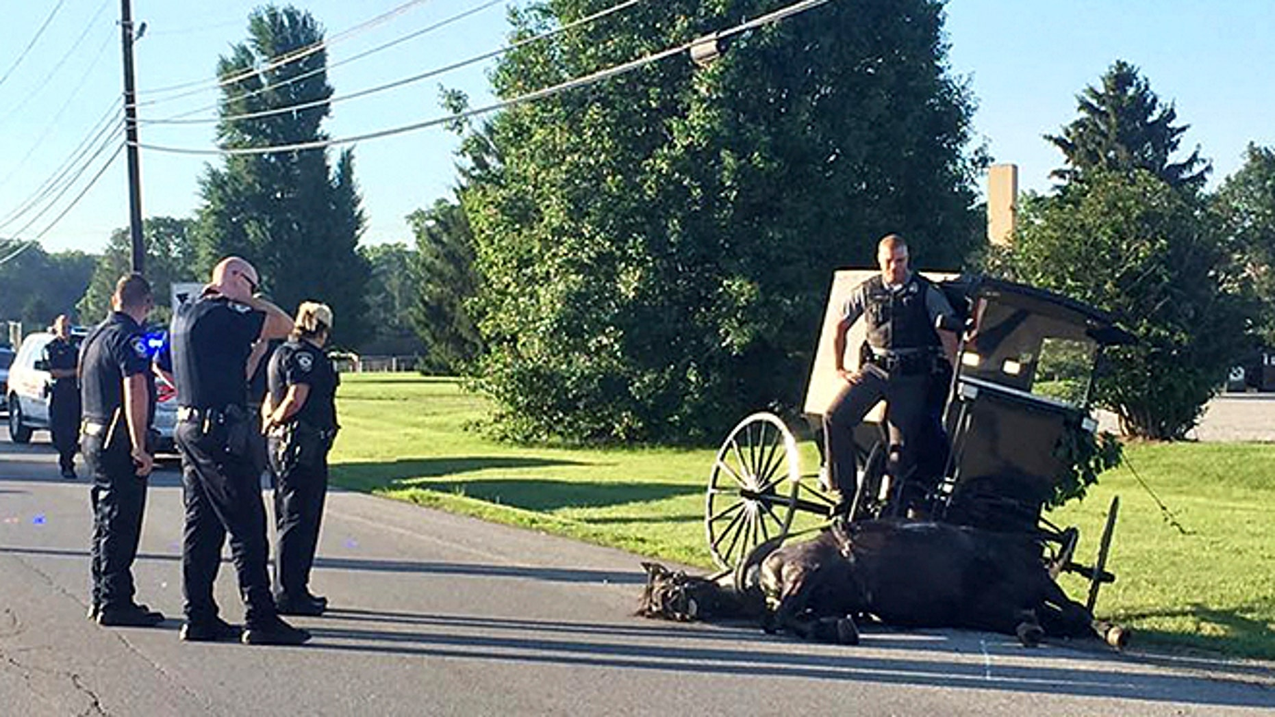 Ohio trooper C.O. Smith jumped into a driver-less buggy to corral a runaway horse.
