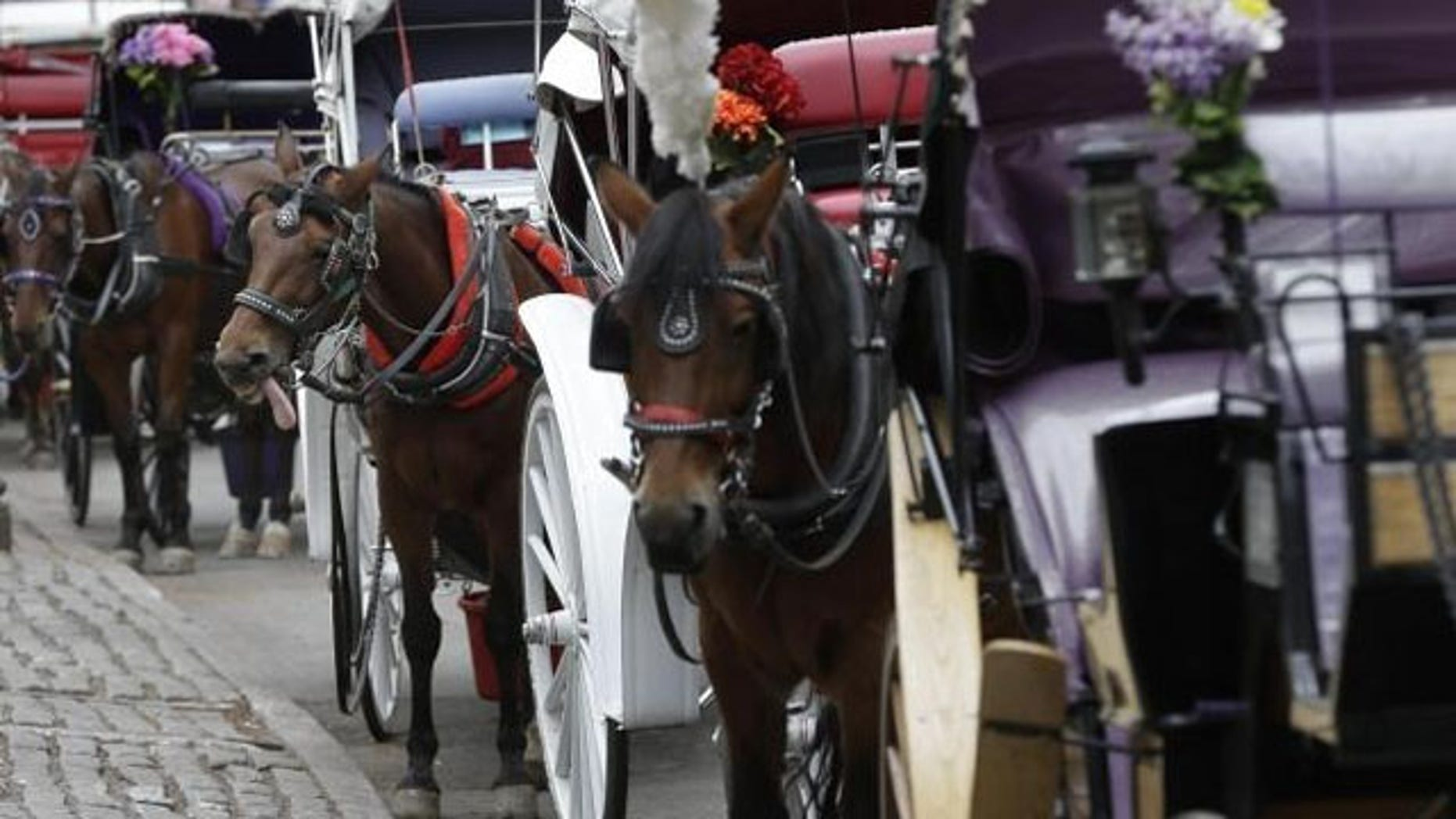Horses and carriages wait for customers near New York's Central Park (AP/File)