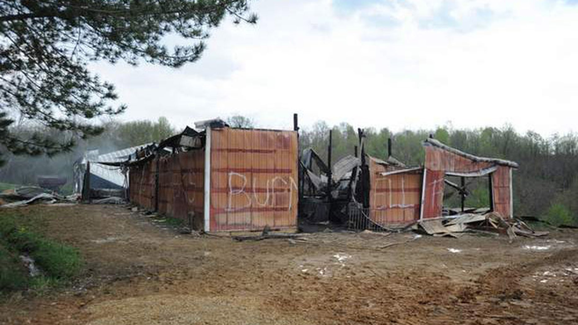 Eight horses, including a newborn and one ready to give birth, were killed in the barn fire in McConnelsville (Chris Crook/Times Recorder).
