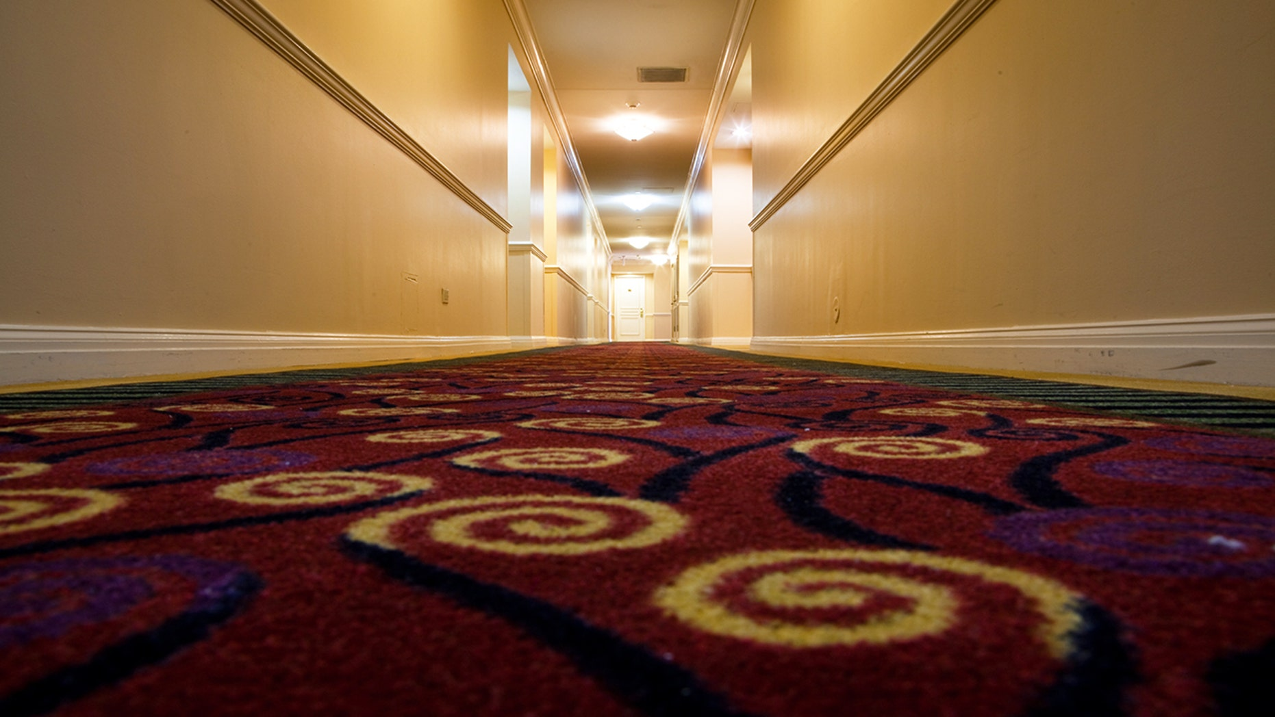 Bill Young has been documenting hotel carpets for years, but his Instagram account only took off this week.