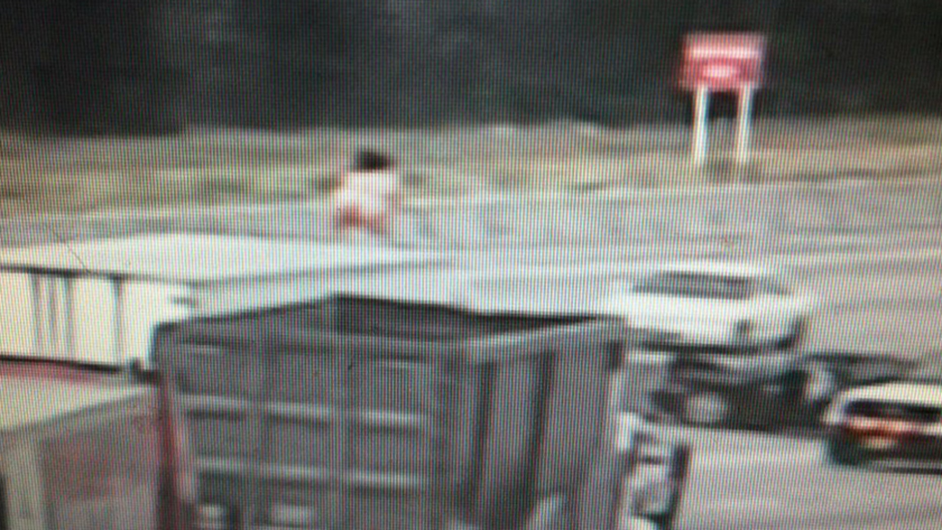 Naked woman dancing on top of truck causes Texas-sized