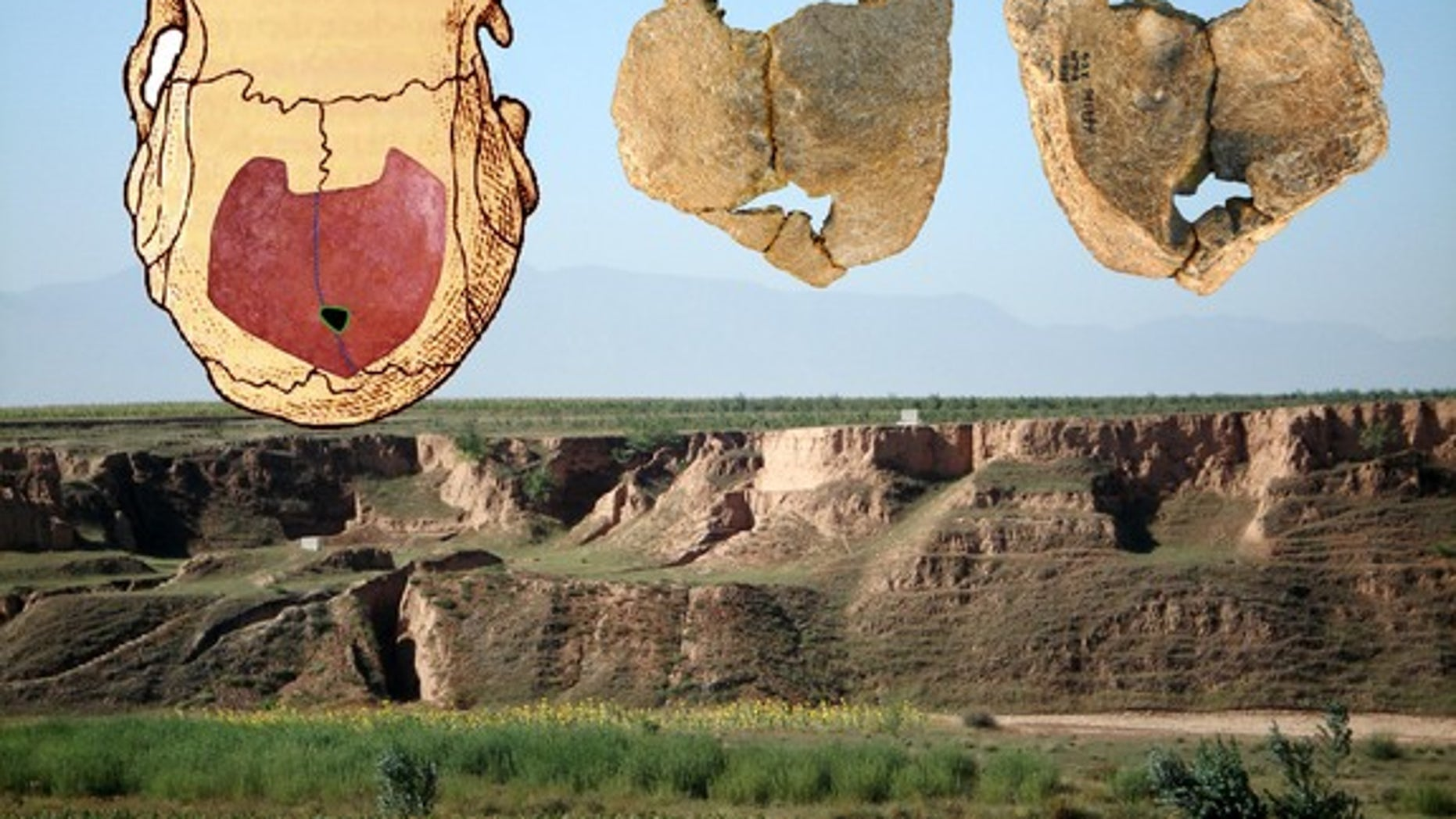 Human skull fossils (inset) found at the Xujiayao site in China (background) show signs of a genetic disorder that hints at inbreeding.