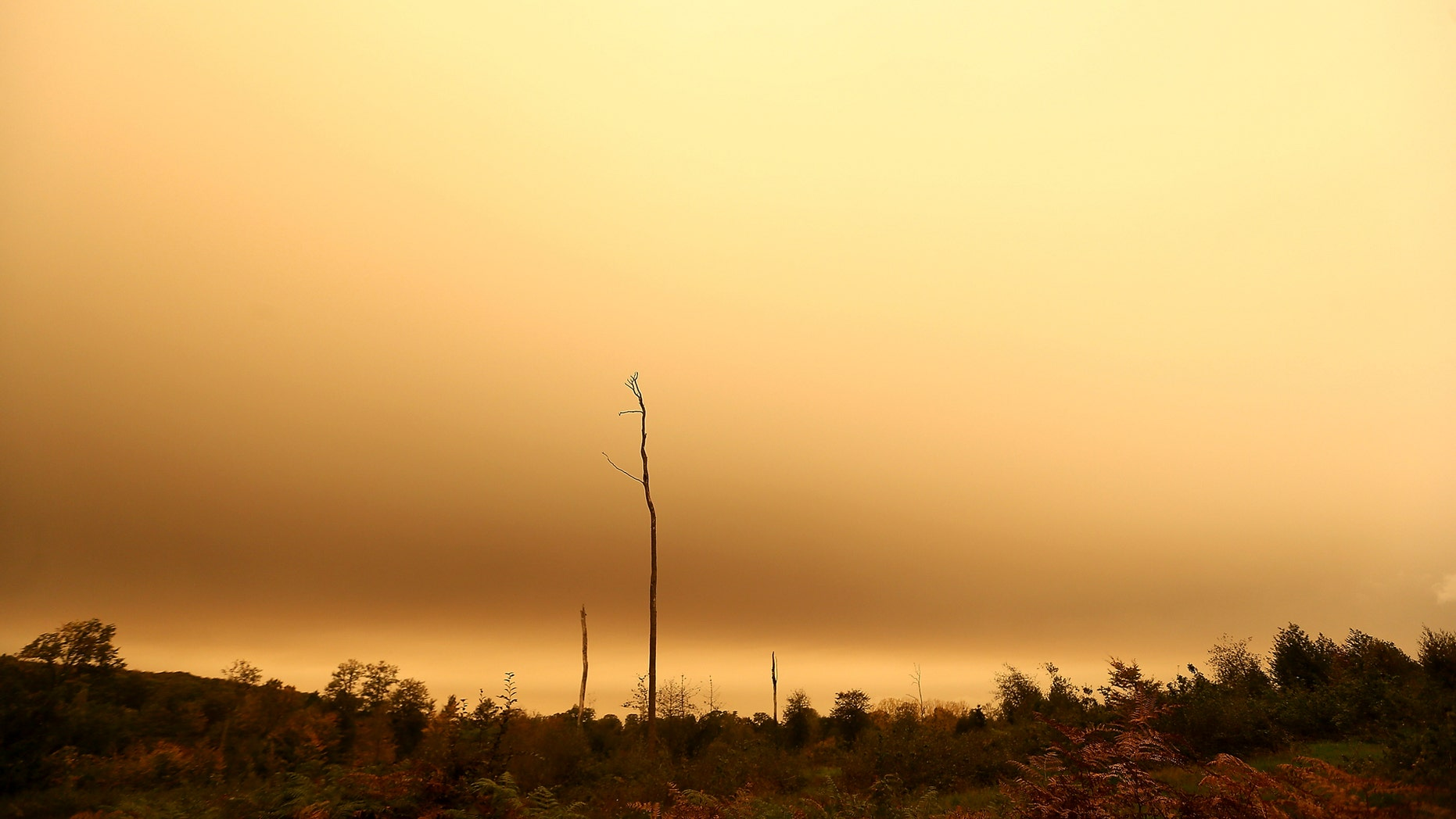 The sky turns orange and yellow in Brittany Monday, Oct.16, 2017 in Chasne-sur-Illet, western France. The sky in France's Brittany region turned yellow as nearby Ophelia storm brought a mix of sand from Sahara and particles from Spain and Portugal's forest fires over the region. Ophelia post-tropical cyclone passed west of the Brittany coast Monday before bringing violent winds to Ireland and the United Kingdom. (AP Photo/David Vincent)