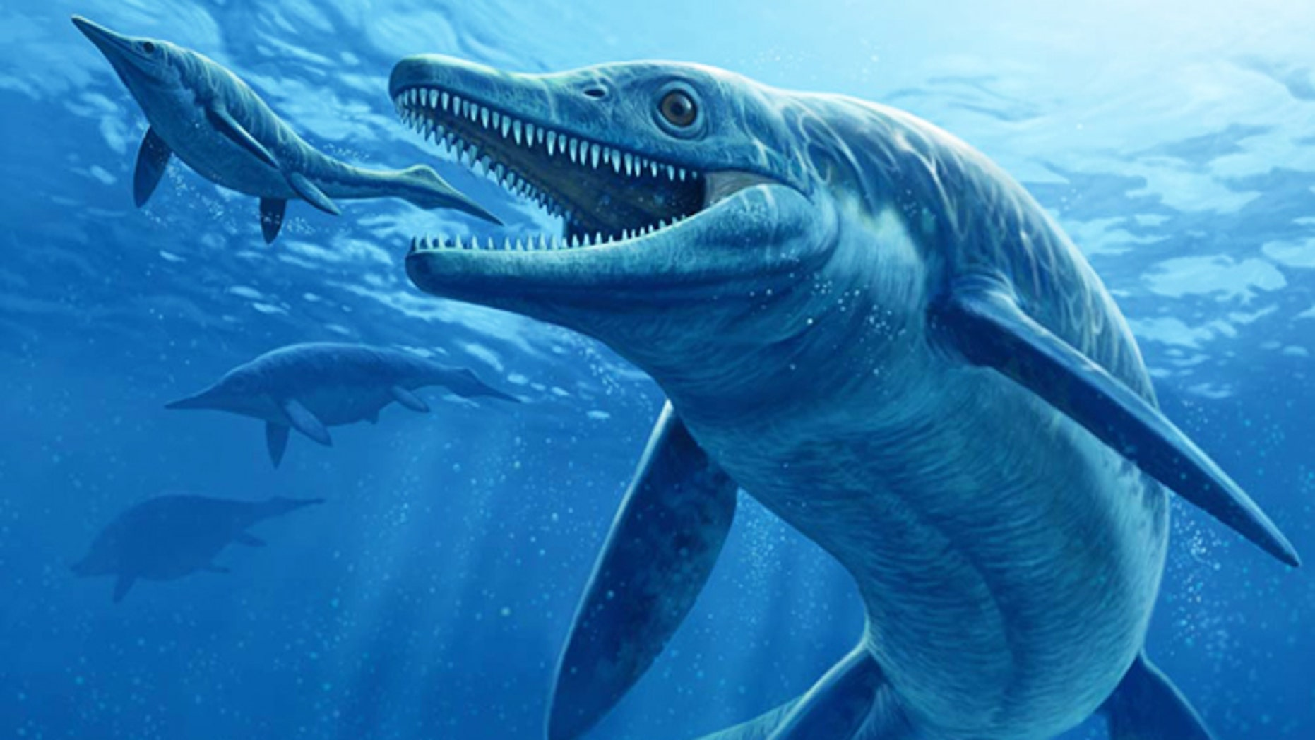 The giant ichthyosaur ruled the oceans some 244 million years ago. Here's what it may have looked like seizing a meaty snack.