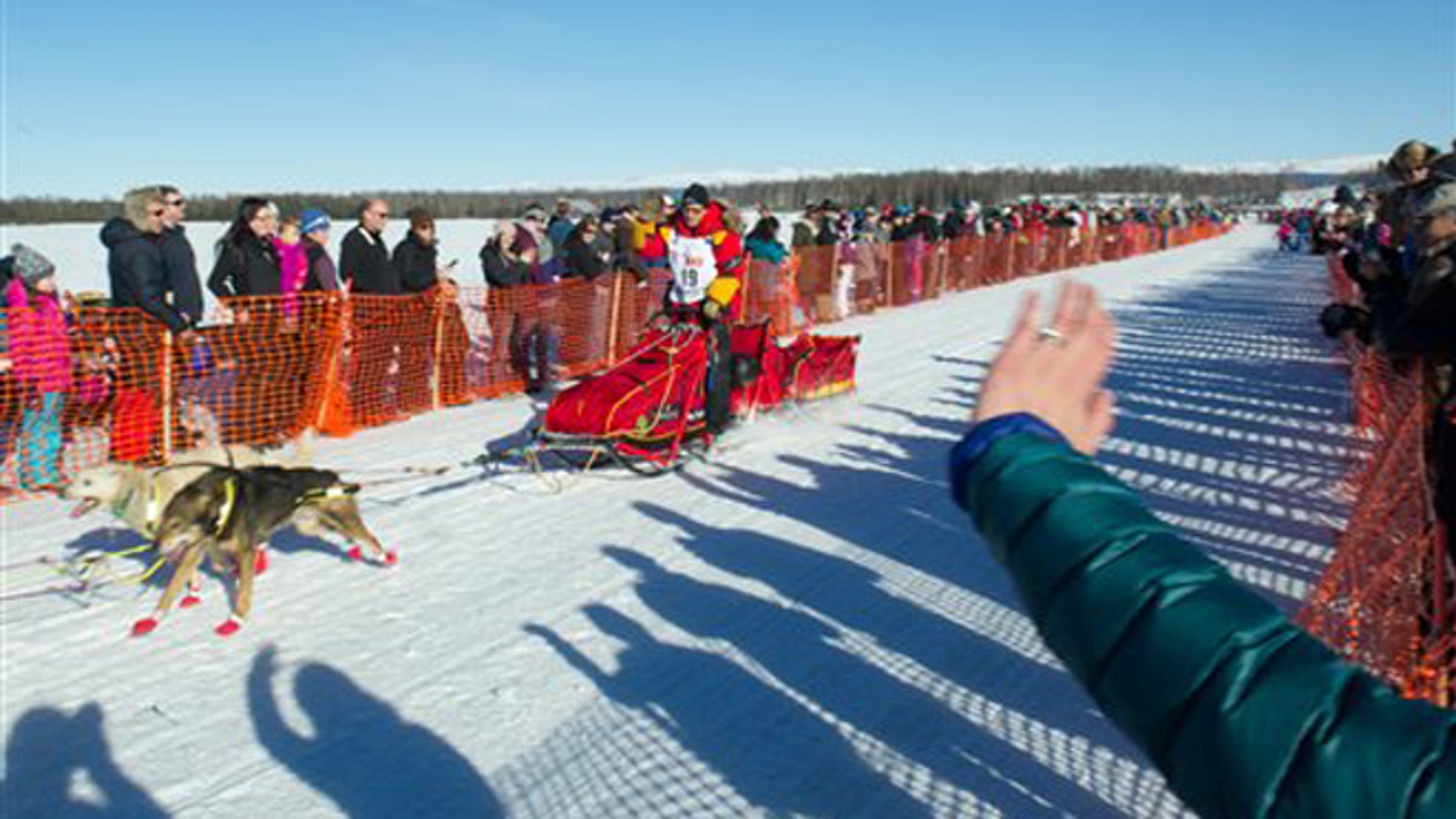 Iditarod Trail Sled Dog Race musher Mitch Seavey begins his race to Nome amongst a crowd of spectators Sunday, March 6, 2016 in Willow, Alaska.  (AP Photo/Michael Dinneen)