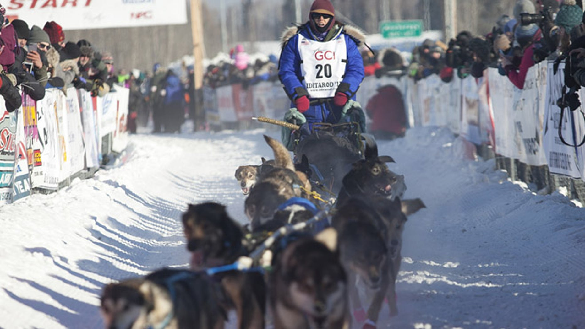 Karin Hendrickson, bib #20, at the start of the 45th Iditarod Trail Sled Dog Race in Fairbanks, Alaska, this week.