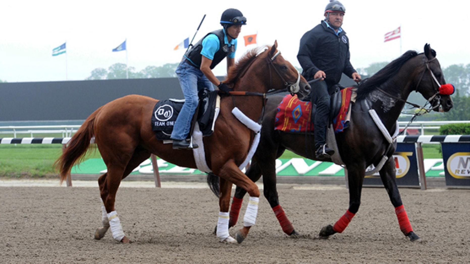 May 24: Triple Crown hopeful I'll Have Another, left, exercise rider Hector Ramos up, is led on the track at Belmont Park in Elmont, N.Y.