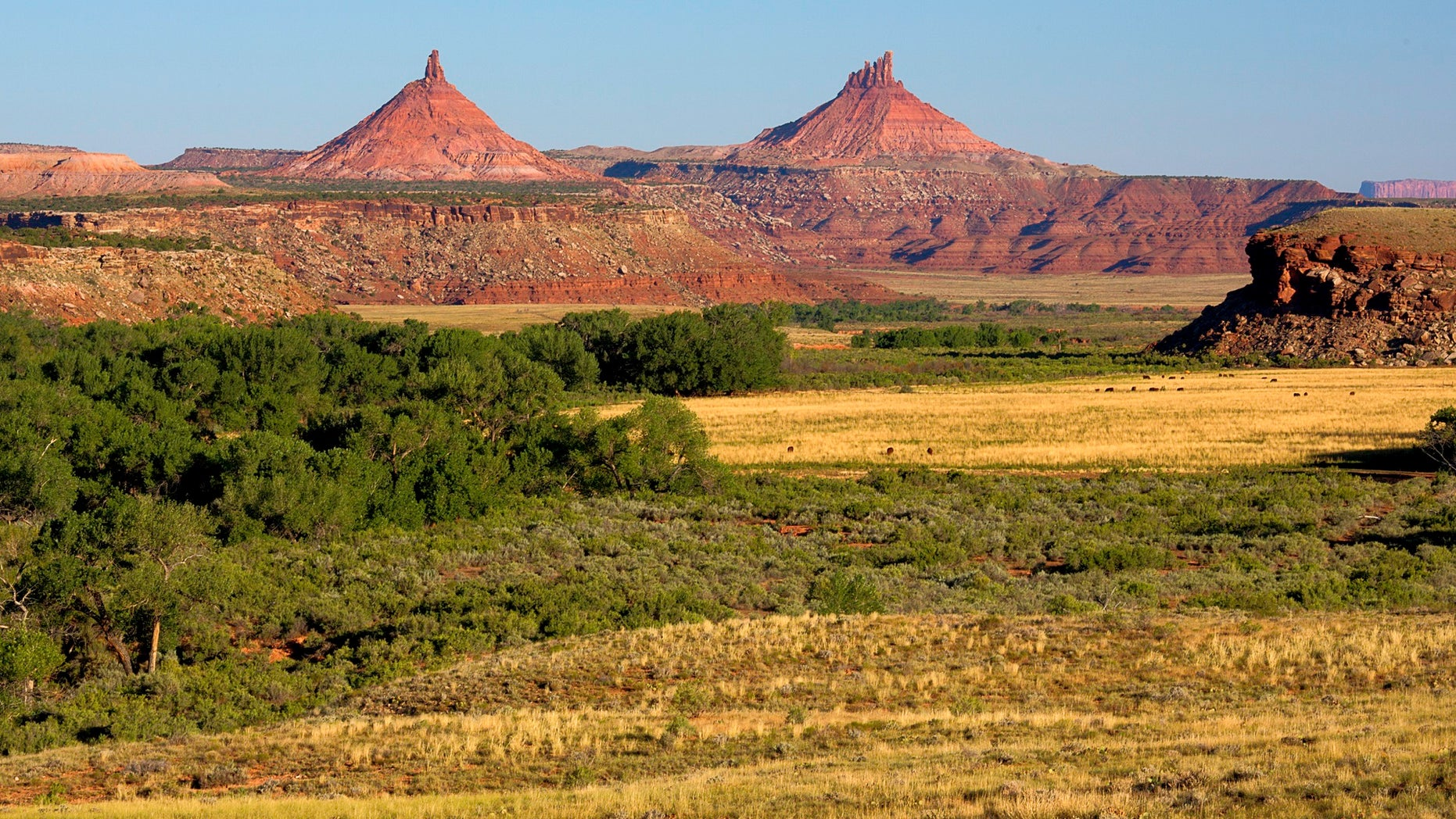 Indian Creek in Bears Ears National Monument (Wikimedia Commons)