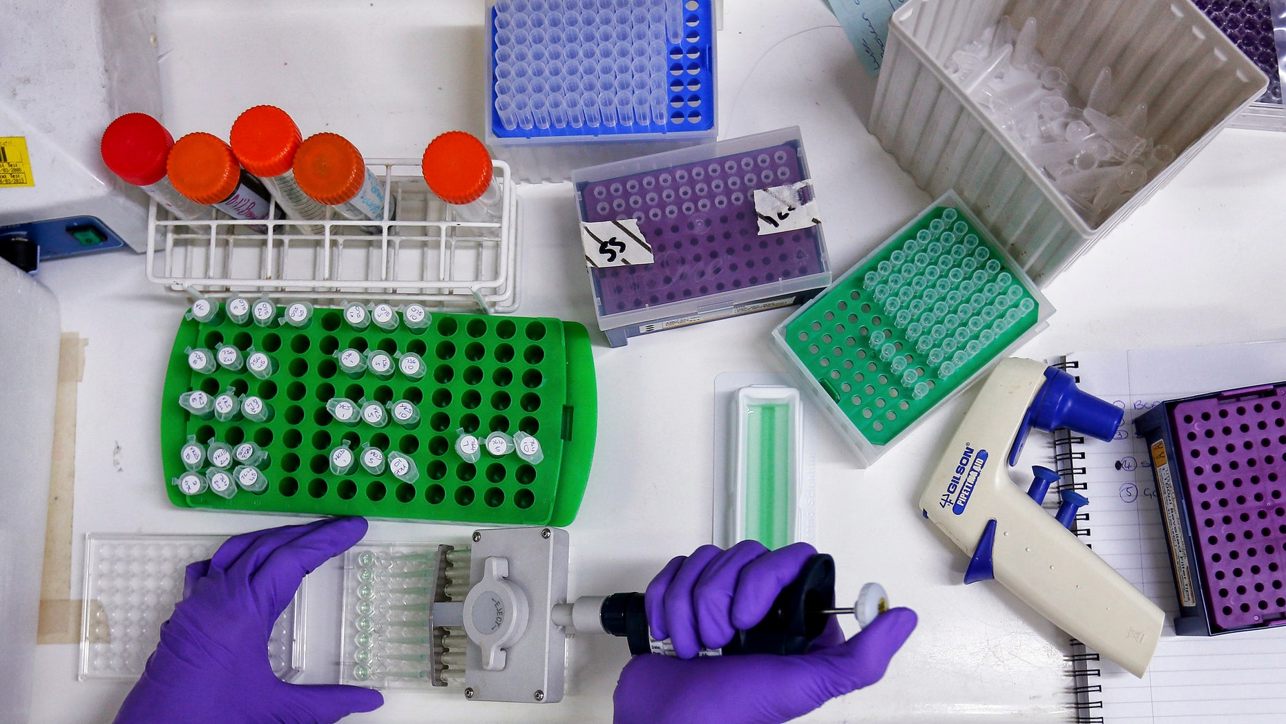 Scientist prepares protein samples for analysis in a lab at the Institute of Cancer Research in Sutton.