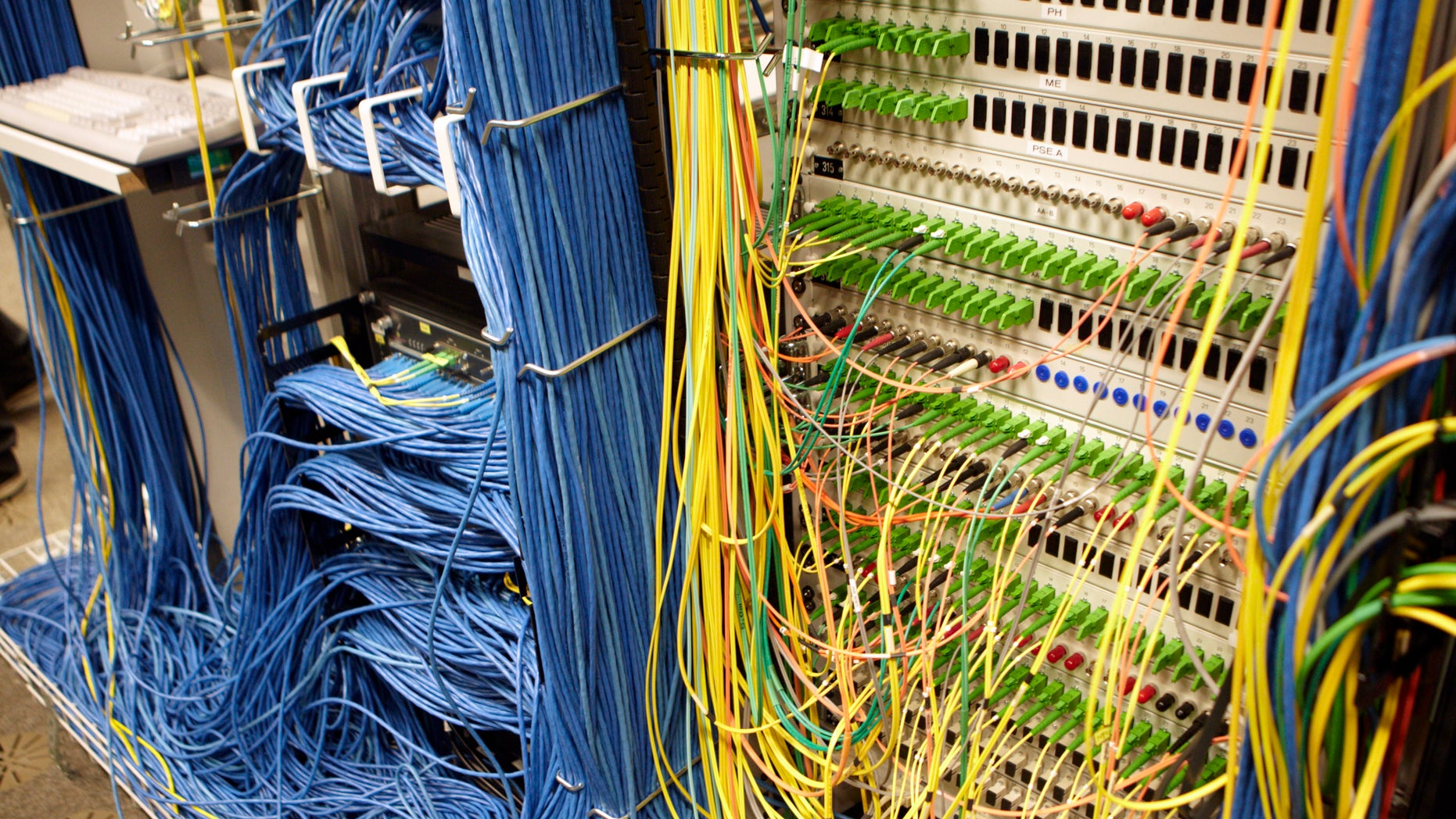 Cables are pictured on the Internet server at the Swiss Federal Institute of Technology (EPFL) in Ecublens, near Lausanne May 9, 2011.