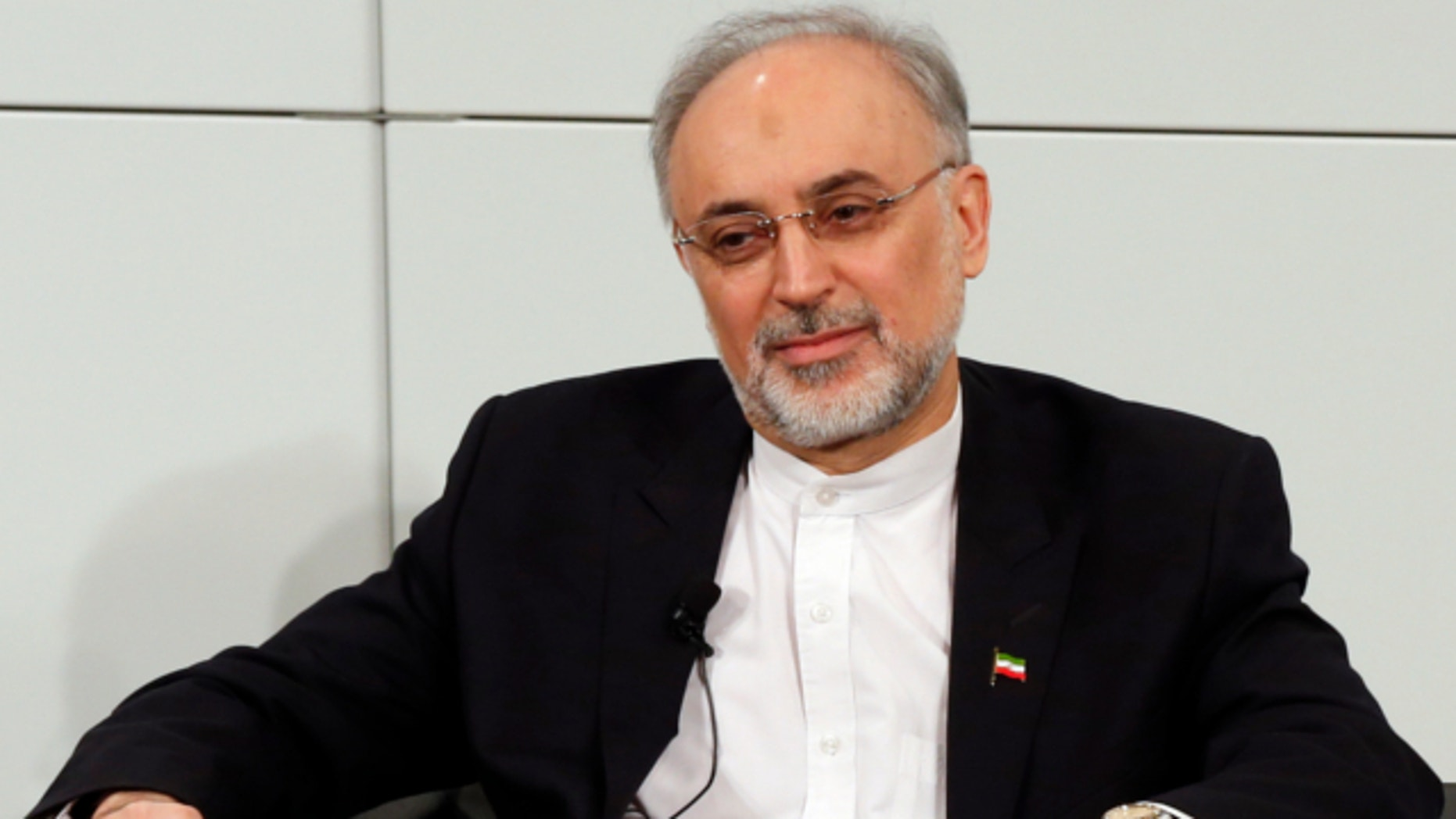 Feb. 3, 2013: Iranian Foreign Minister Ali Akbar Salehi attends a meeting at the Security Conference in Munich, southern Germany.
