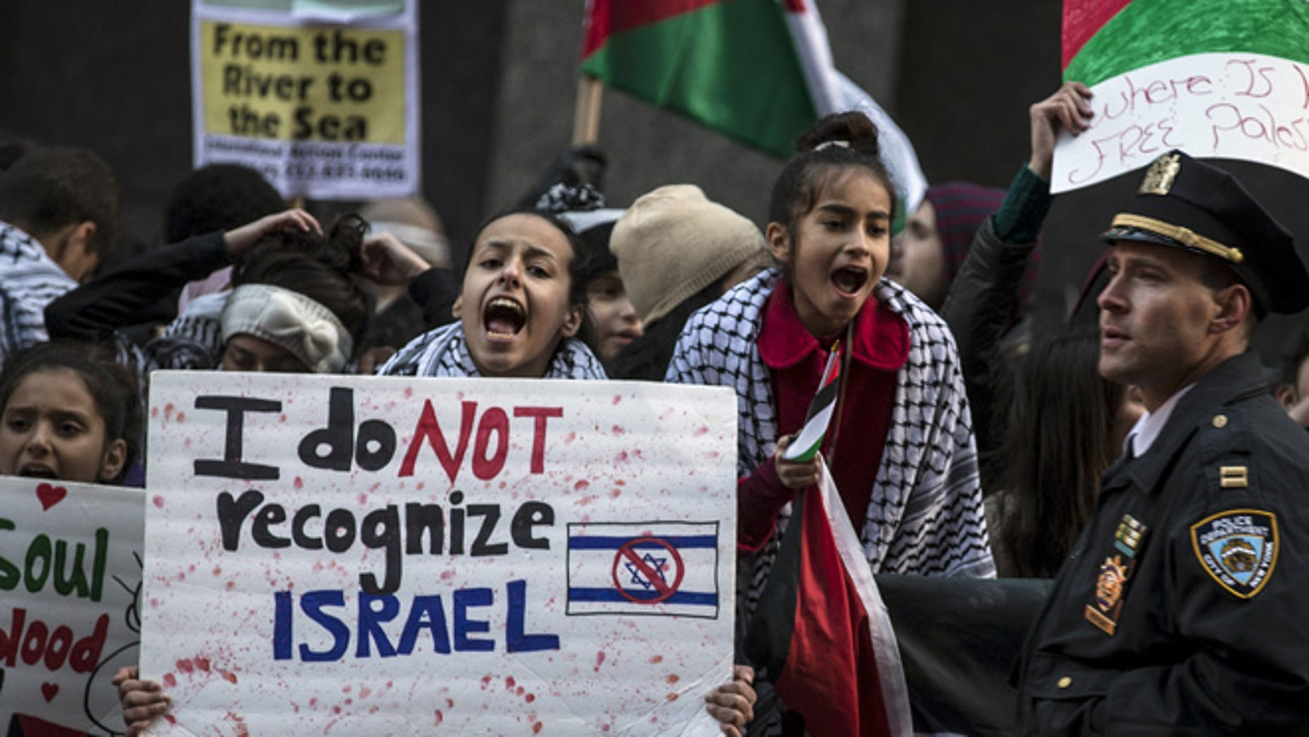 A demonstrator chants slogans during a pro-Palestinian protest in New York's Times Square, in this Oct. 18, 2015 file photo.