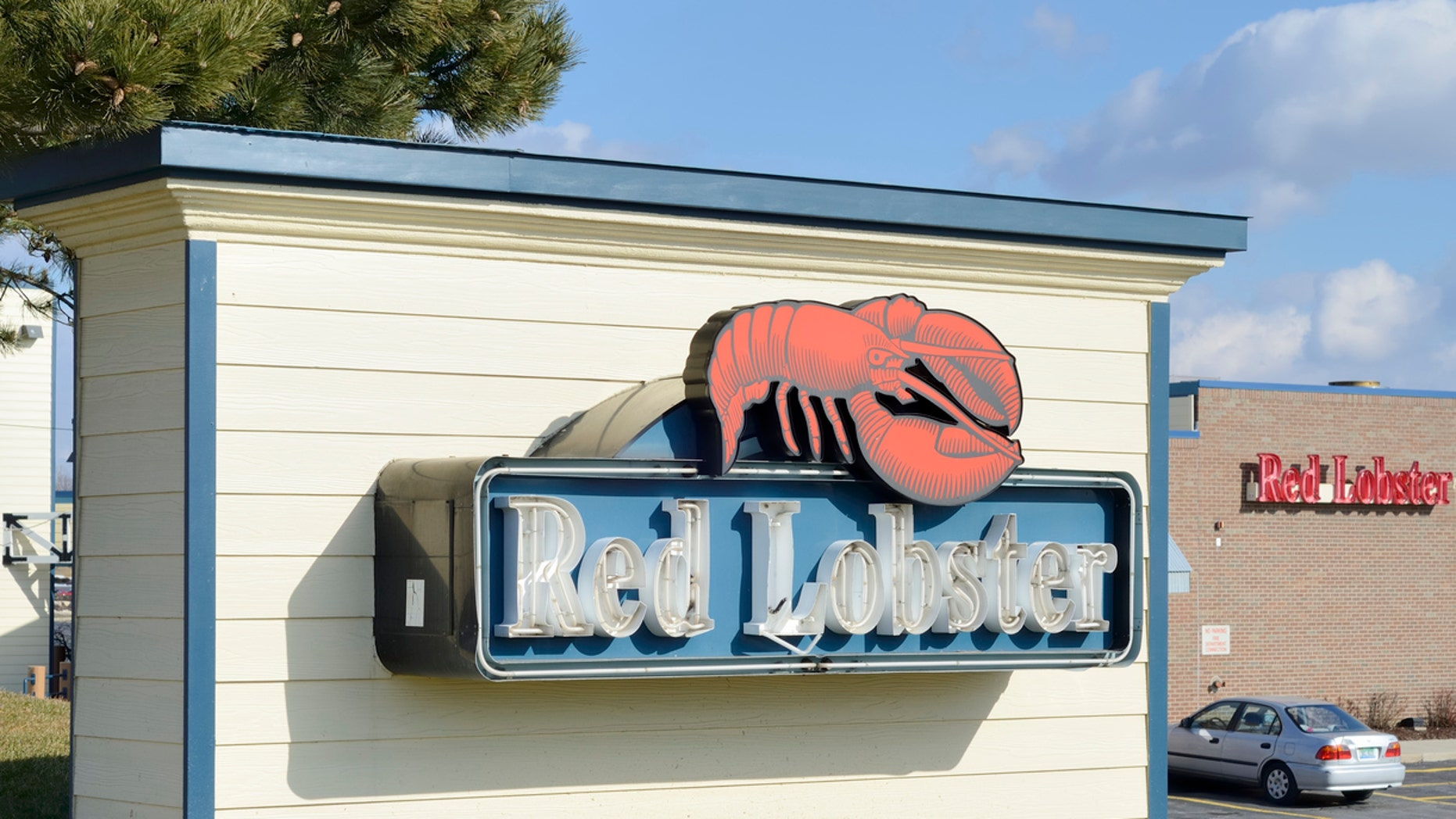 An elderly woman is suing Red Lobster over her hip replacement.