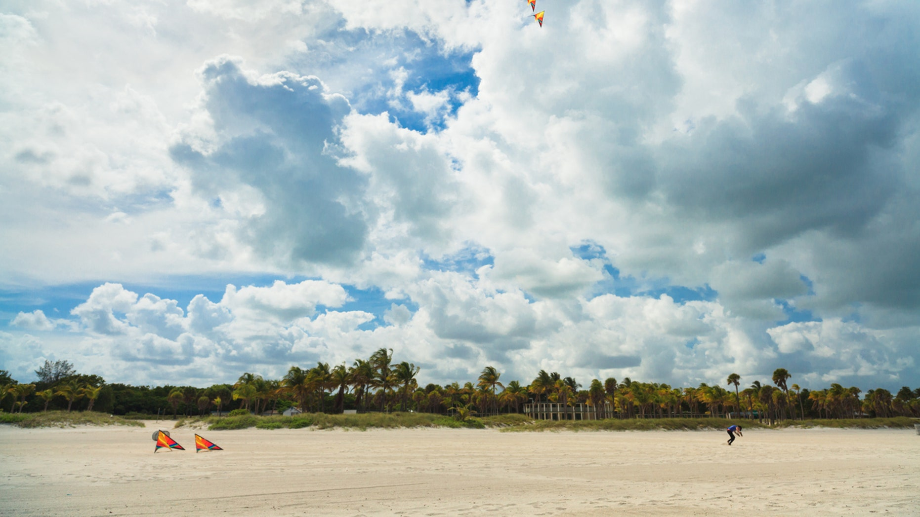 The girl was celebrating her third birthday at Crandon Beach in Key Biscayne.