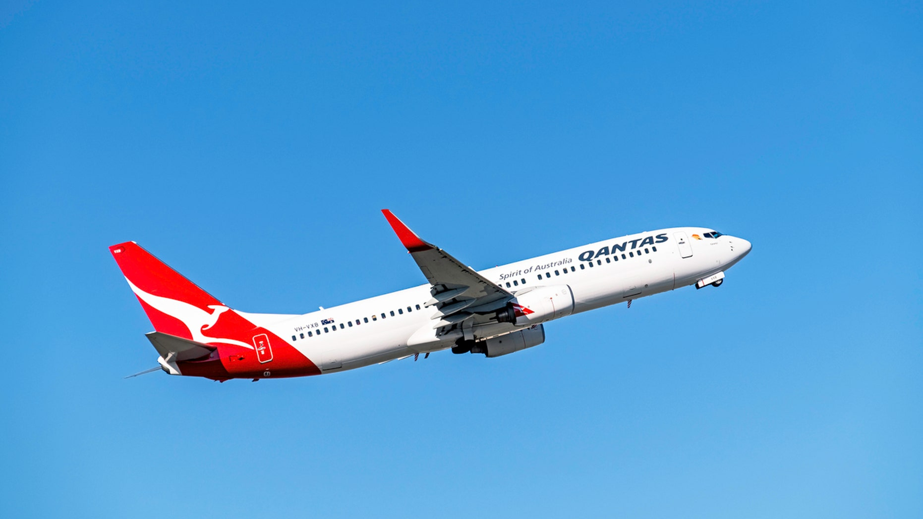 The CEO of Qantas Airlines reportedly mused that cargo hold could prove a valuable new cabin class.