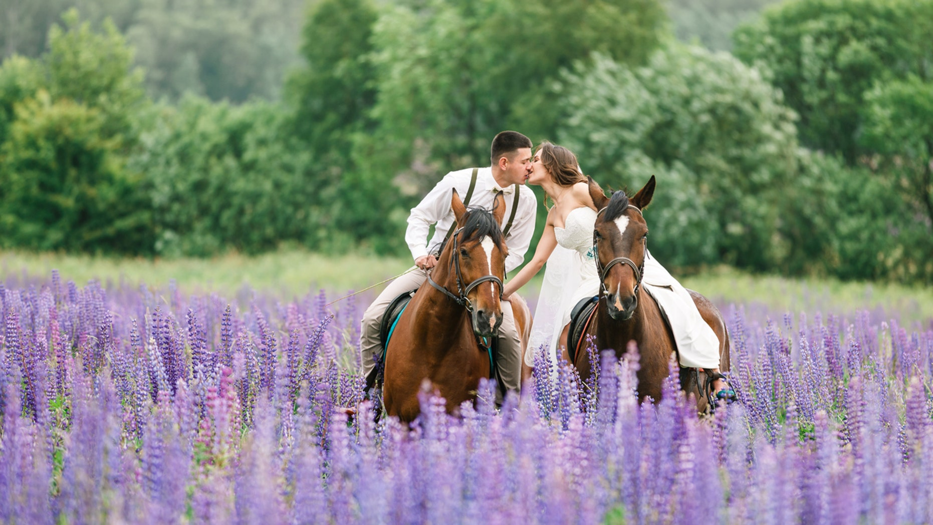 The bride's horse took over the photo shoot with an ear-to-ear grin that has won Facebook over.
