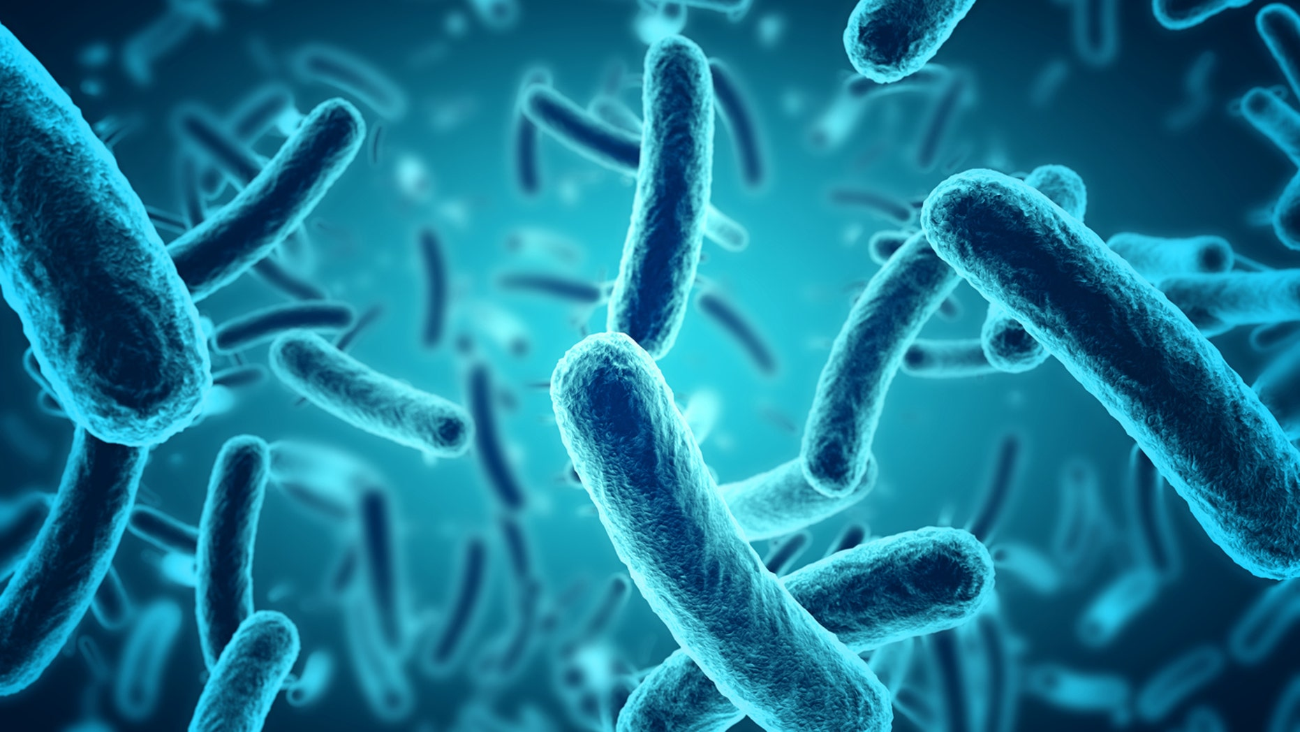 There were 94,530 human cases of salmonellosis reported in the EU in 2016.