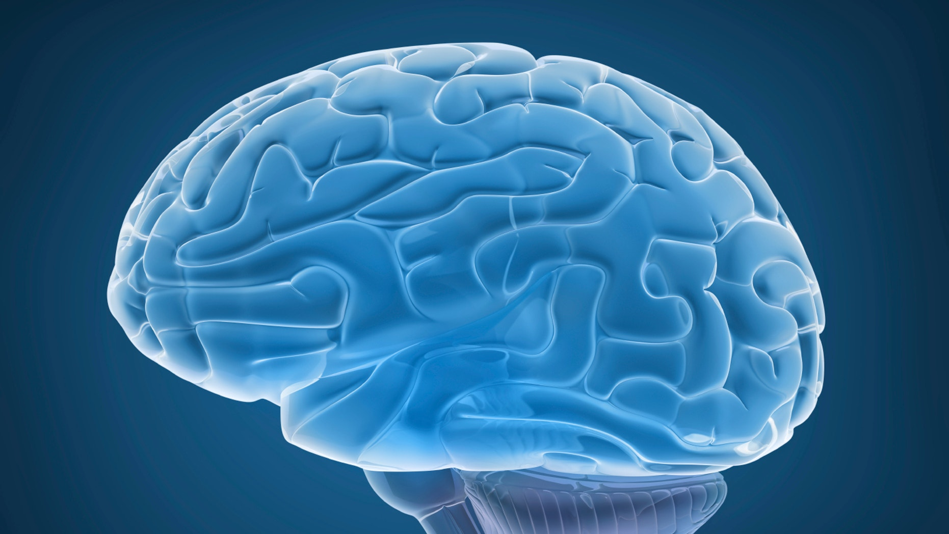 If Genes Dont Turn Off Brains Wiring >> New Study Suggests Brain Glitch May Cause Ocd Fox News