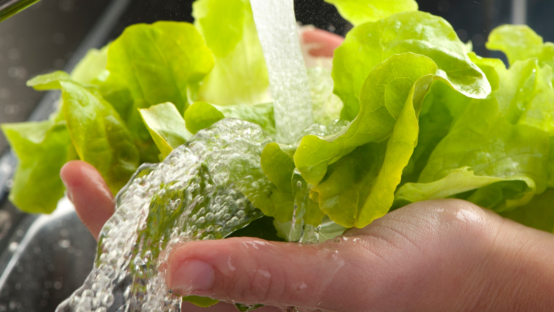 Food experts recommend washing fruits and vegetables in order to lessen the risk of contracting a foodborne illness.
