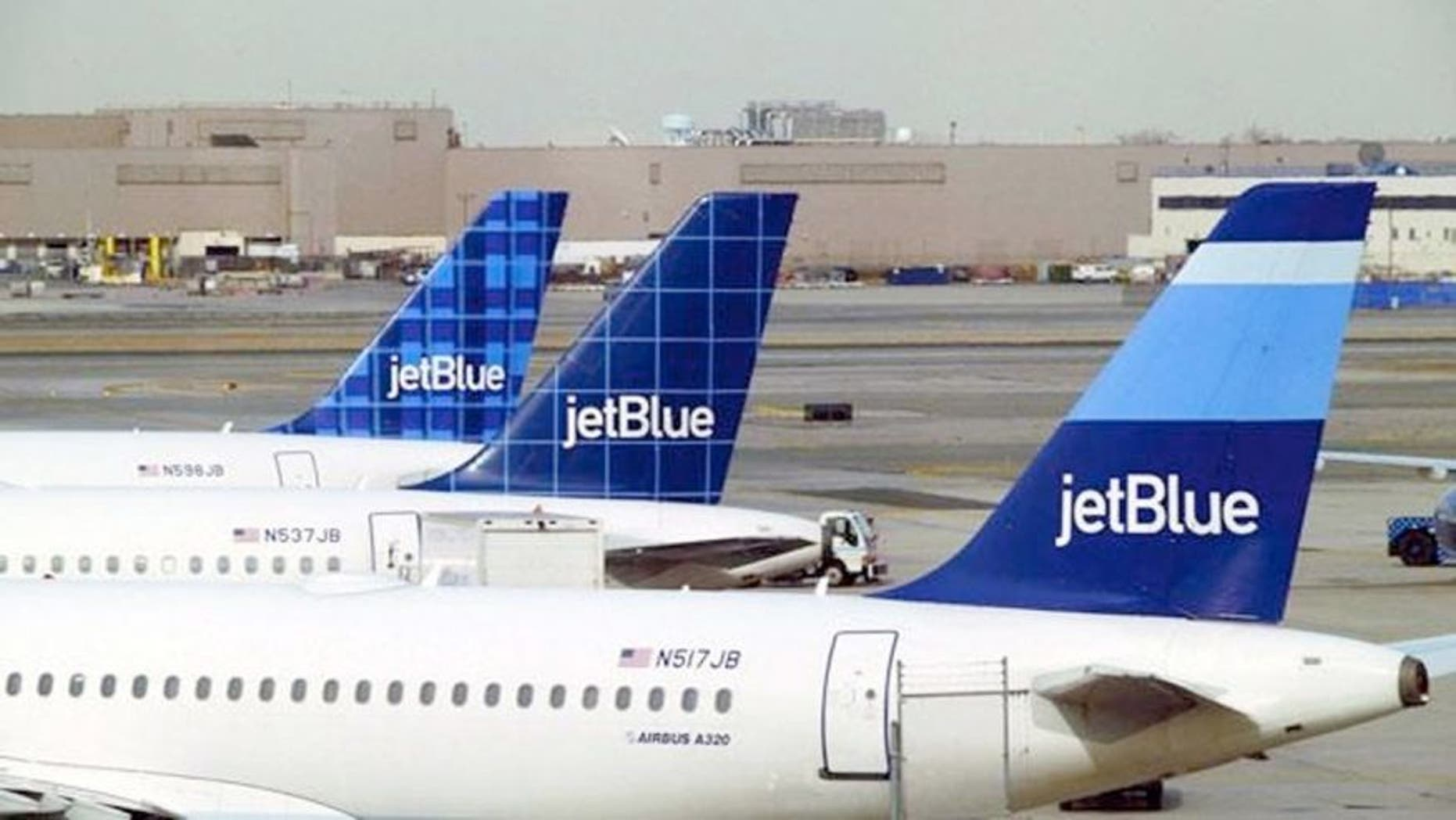 A JetBlue flight heading from New York to Denver was delayed after a truck carrying toilet waste crashed into the aircraft.