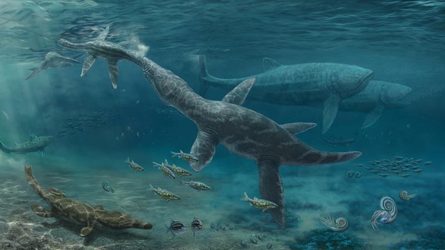 Artist's impression of Jurassic seas (Credit: Nikolay Zverkov)