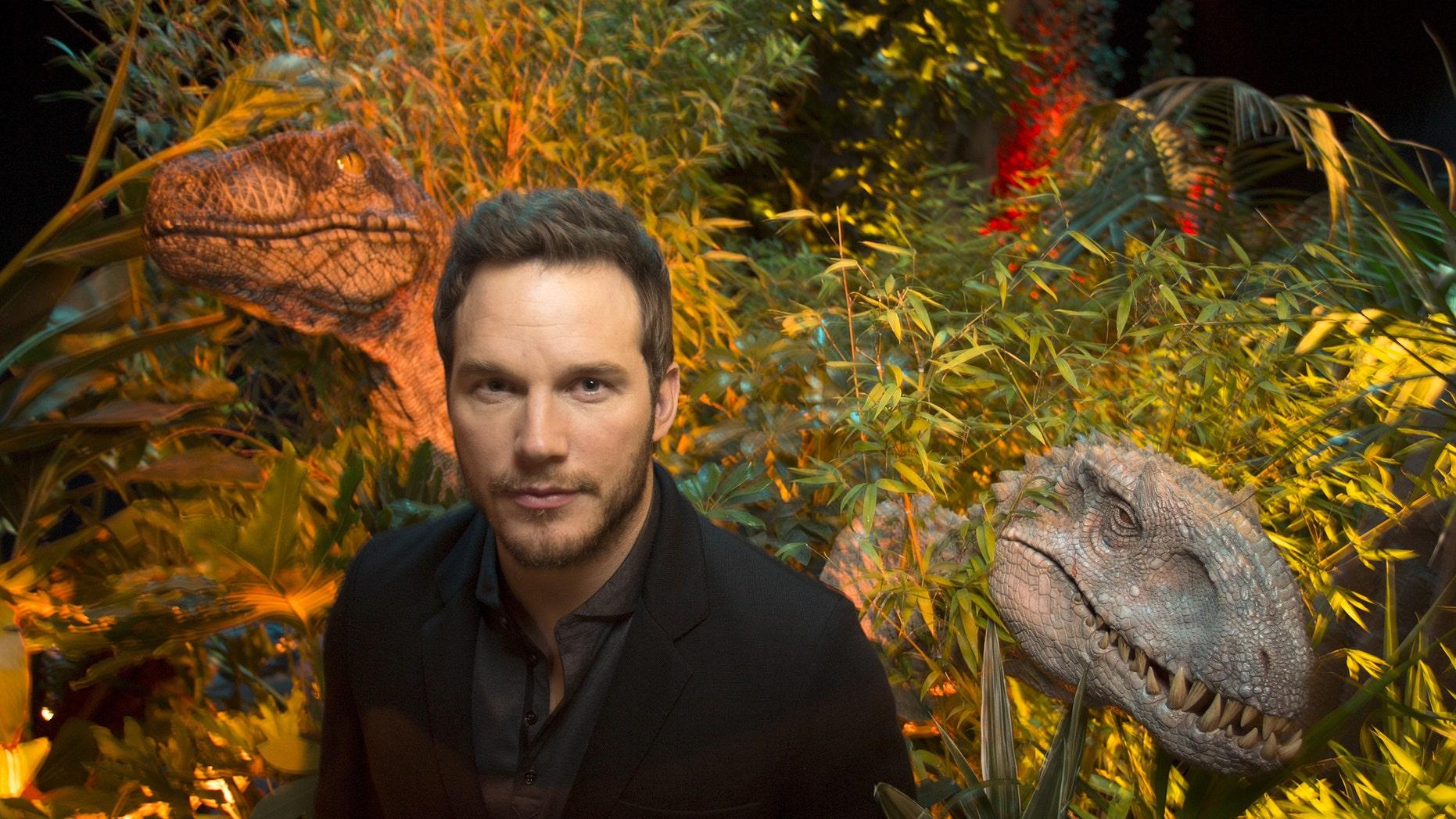 "File photo: Actor Chris Pratt, who plays raptor trainer Owen in ""Jurassic World"", poses at Universal Studios in Los Angeles, California, June 6, 2015. (REUTERS/David McNew)"