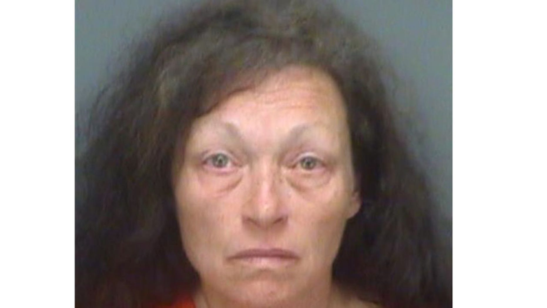 Kathleen Steele's booking photo. (Pinellas County Sheriff's Office)