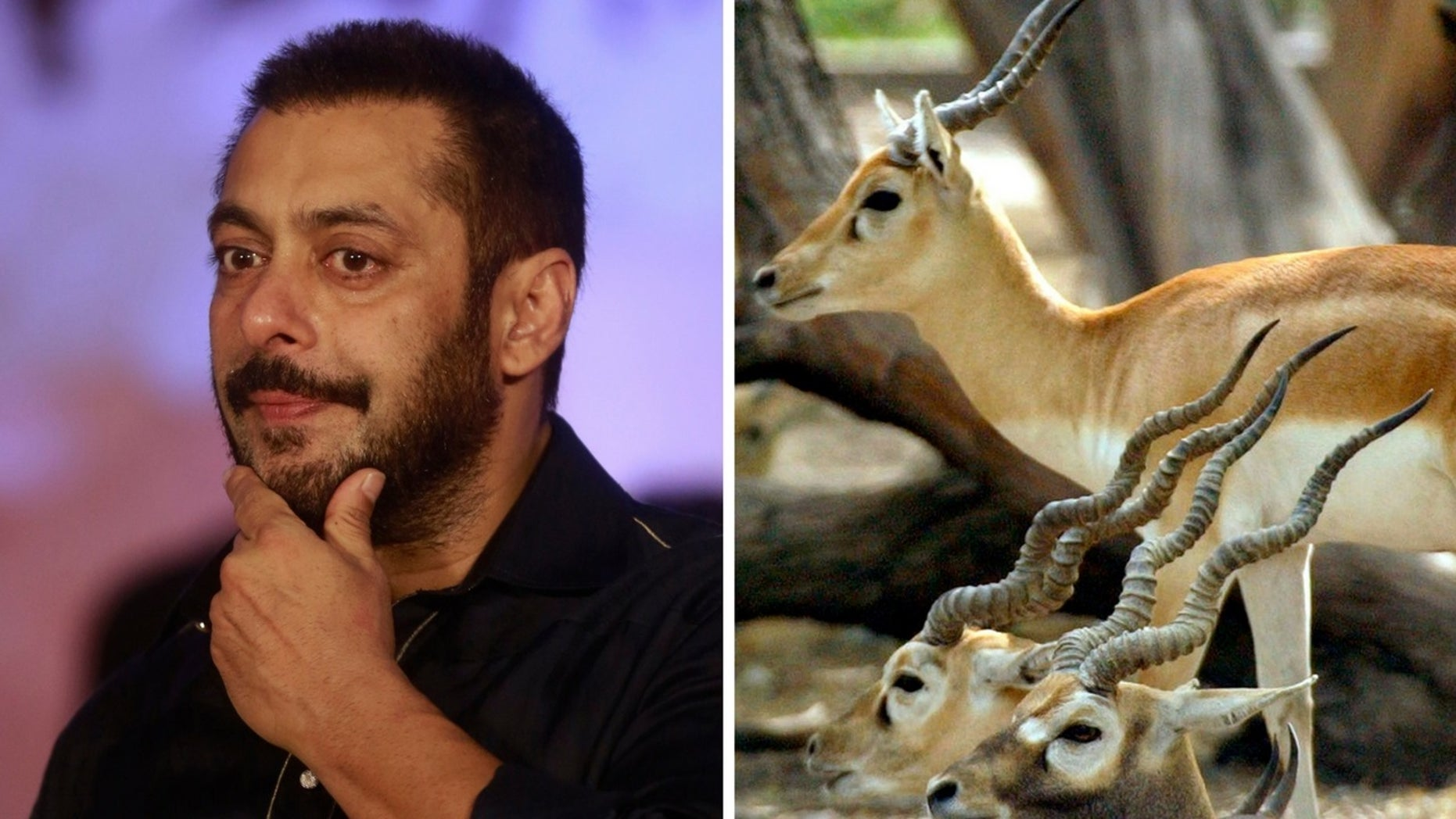 Salman Khan was sentenced to five years in prison for poaching rare antelope 20 years ago.