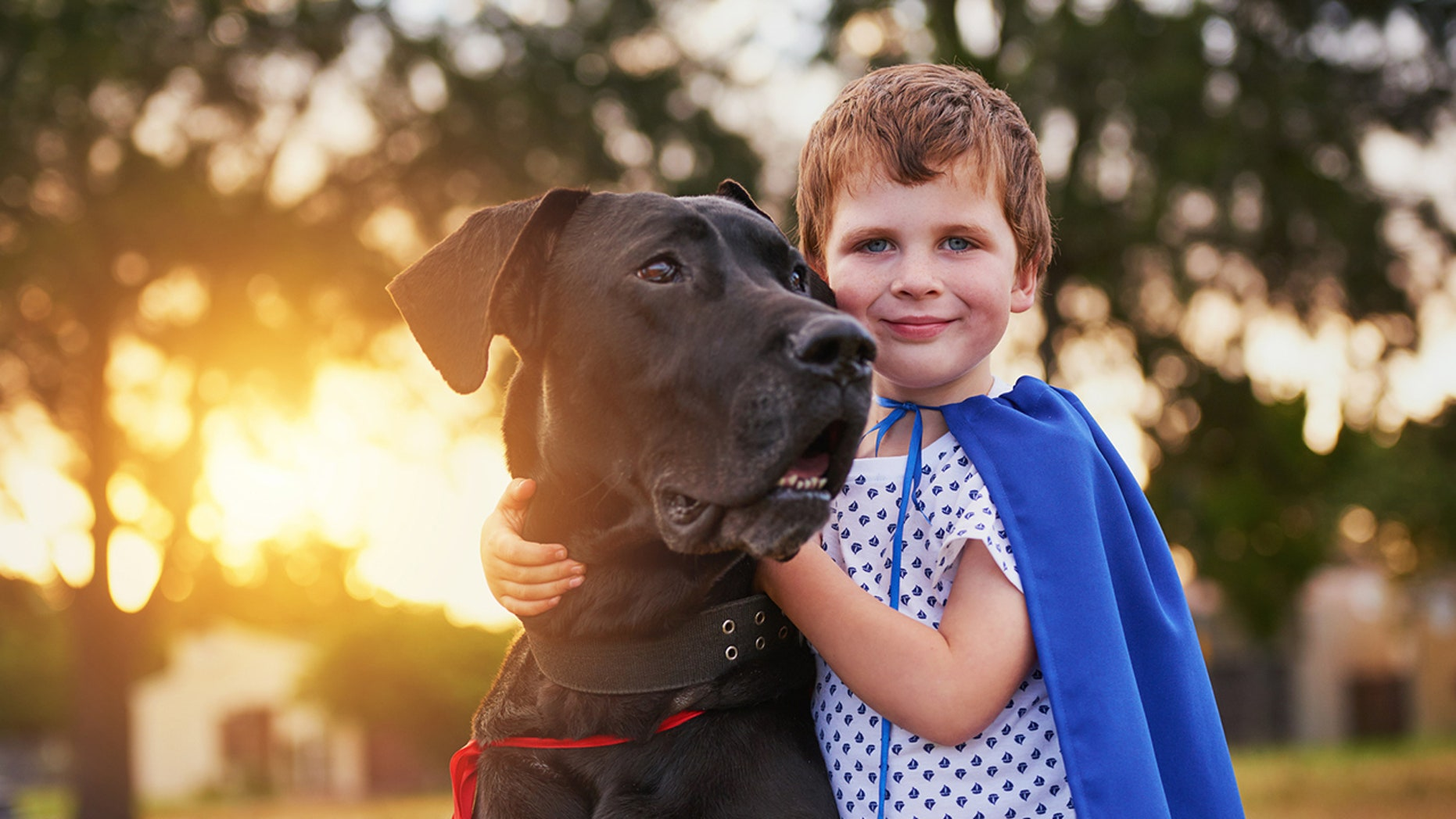 Kids growing up in households with dogs or cats may not be benefiting as much as we think.