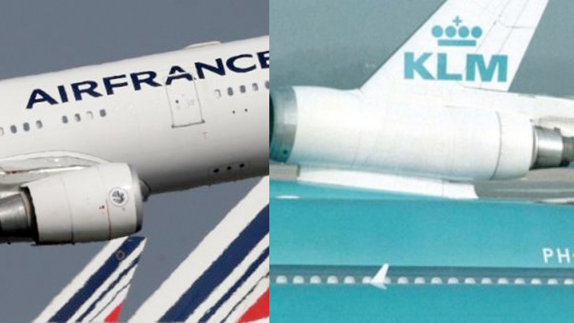 Mohammad Khodakarami, deputy head of Iran's civil aviation authority, said both Air France and Dutch flagship KLM have already expressed their readiness to resume flights to Tehran.