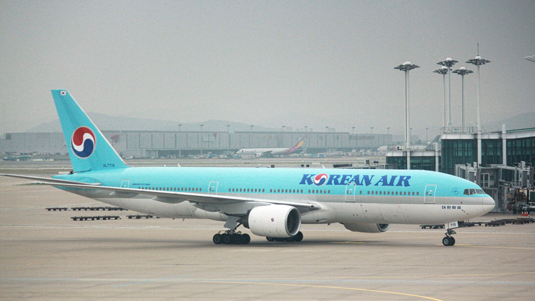 A Korean Air flight preparing to leave from Incheon Airport was reportedly delayed almost two hours because of the passenger.