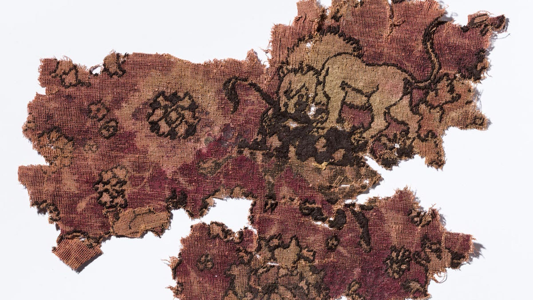 Fragments of carpet were discovered in a 17th-century shipwreck at the bottom of the sea off the coast of the Netherlands.