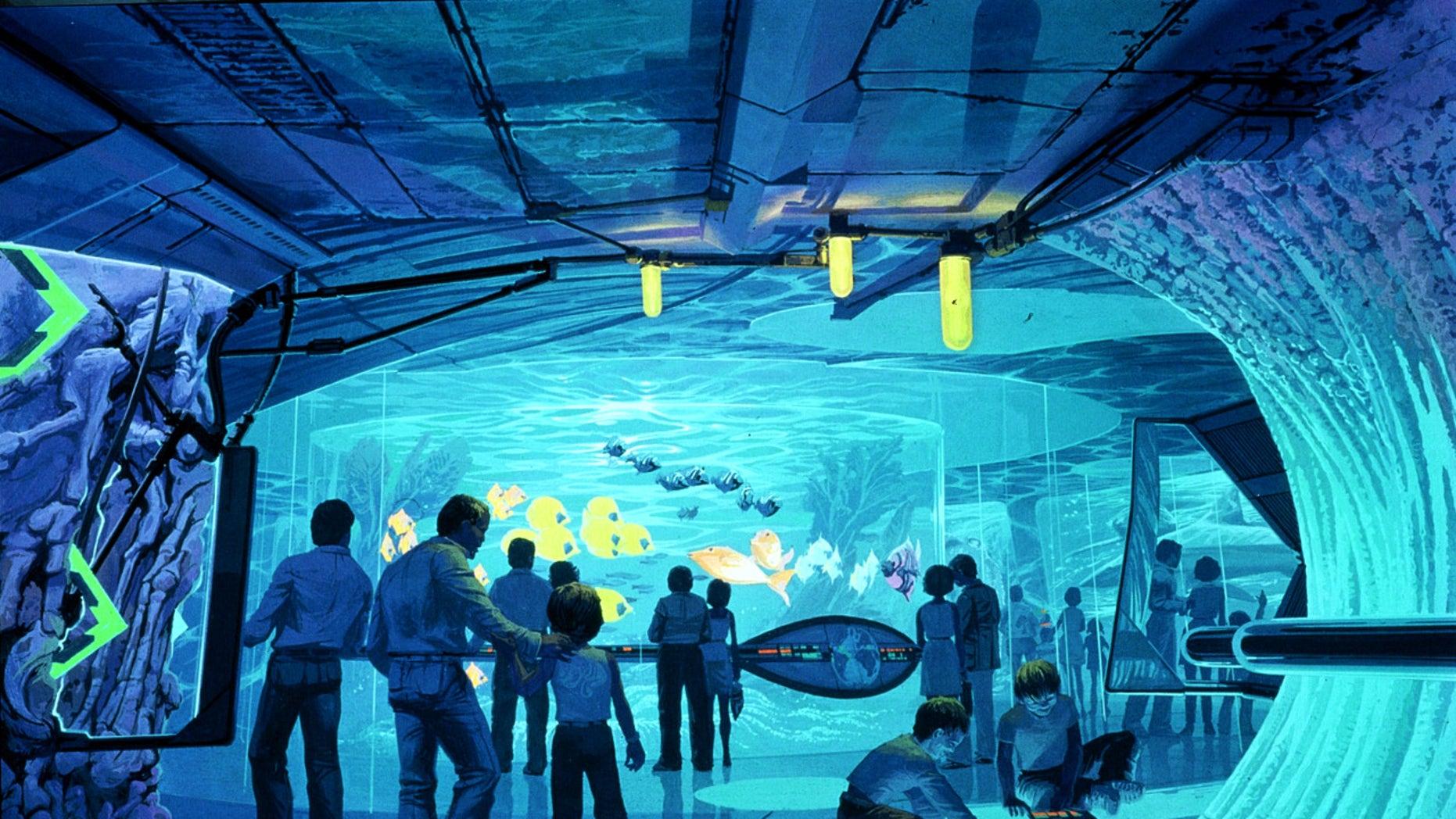 A peek inside the virtual aquatic center.