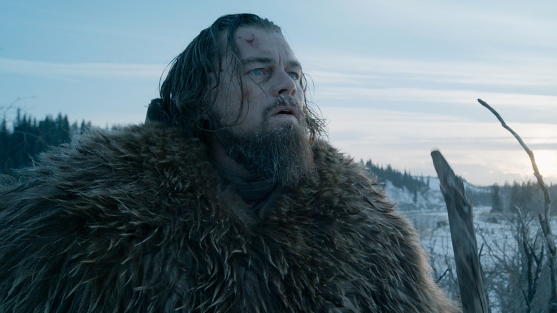 """This photo provided by courtesy of  Twentieth Century Fox shows, Leonardo DiCaprio as Hugh Glass, in a scene from the film, """"The Revenant,"""" directed by Alejandro Gonzalez Inarritu. The 88th annual Academy Awards nominations will be announced beginning at 5:30 a.m. PST on Thursday, Jan. 14, 2016, at the Academy of Motion Picture Arts and Sciences in Beverly Hills, Calif.  The Oscars will be presented on Feb. 28, 2016, in Los Angeles. (Courtesy Twentieth Century Fox via AP)"""